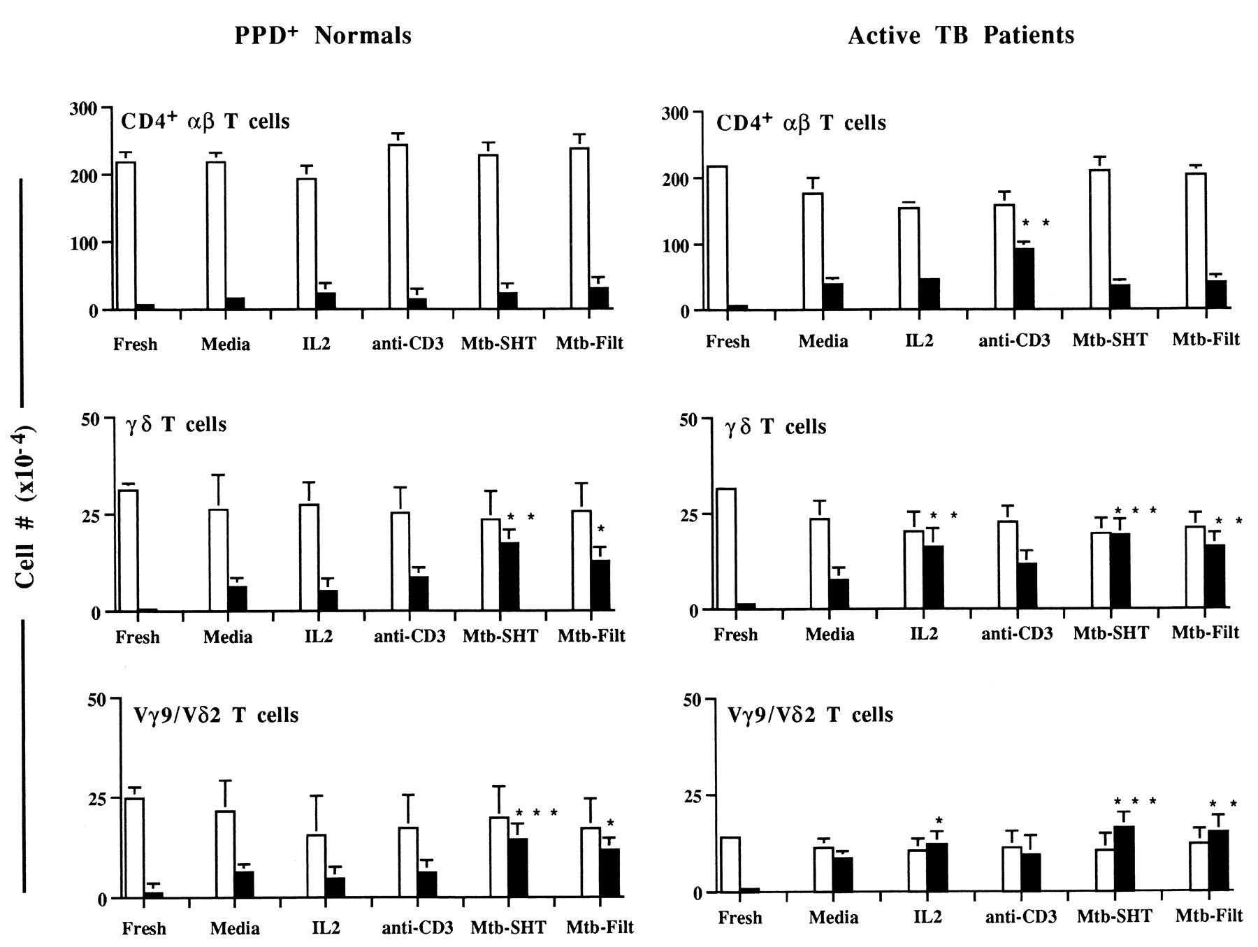 Involvement of the Fas/Fas Ligand Pathway in Activation