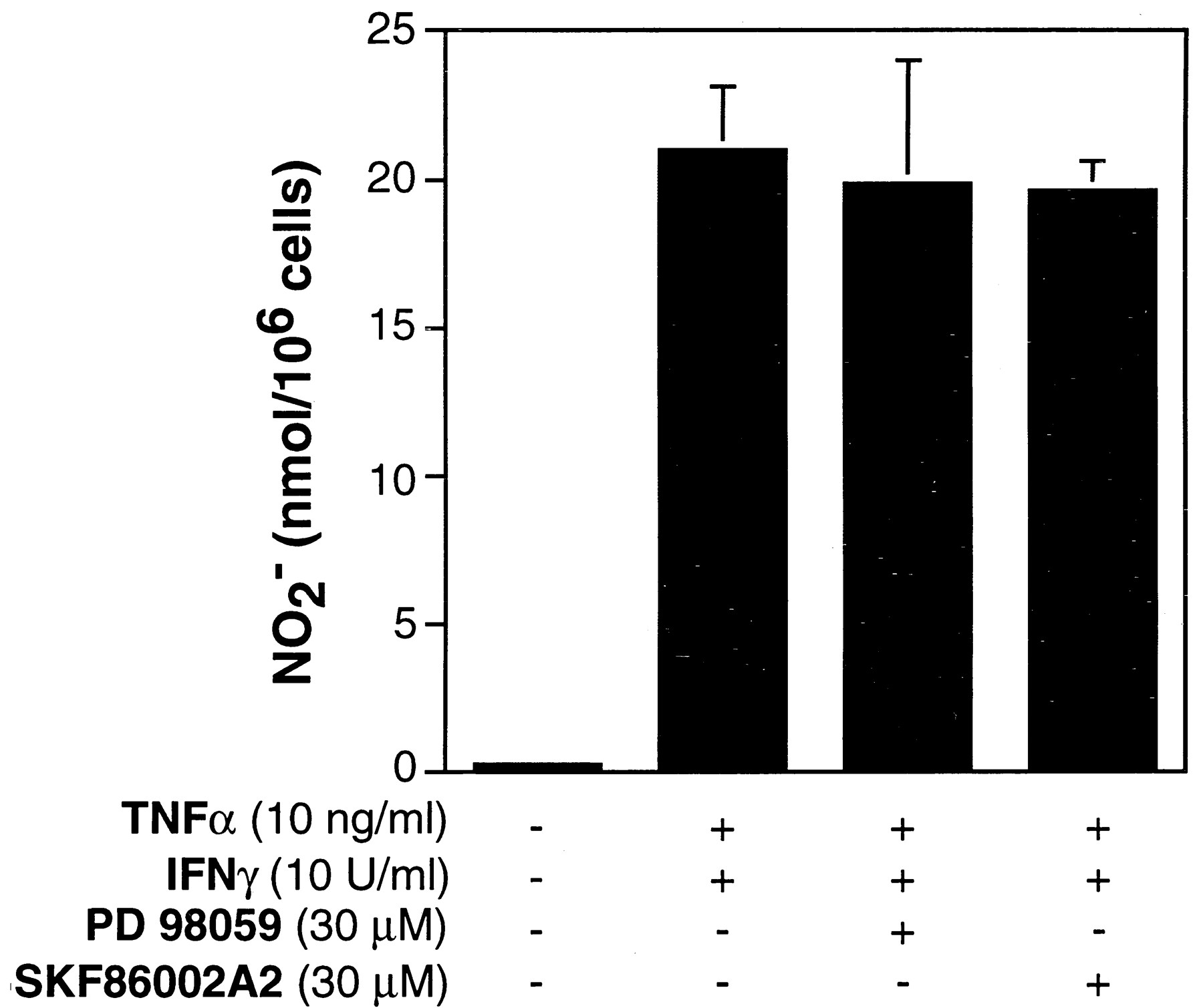Evaluation Of The Role Of Mitogen Activated Protein Kinases In The Expression Of Inducible Nitric Oxide Synthase By Ifn G And Tnf A In Mouse Macrophages The Journal Of Immunology