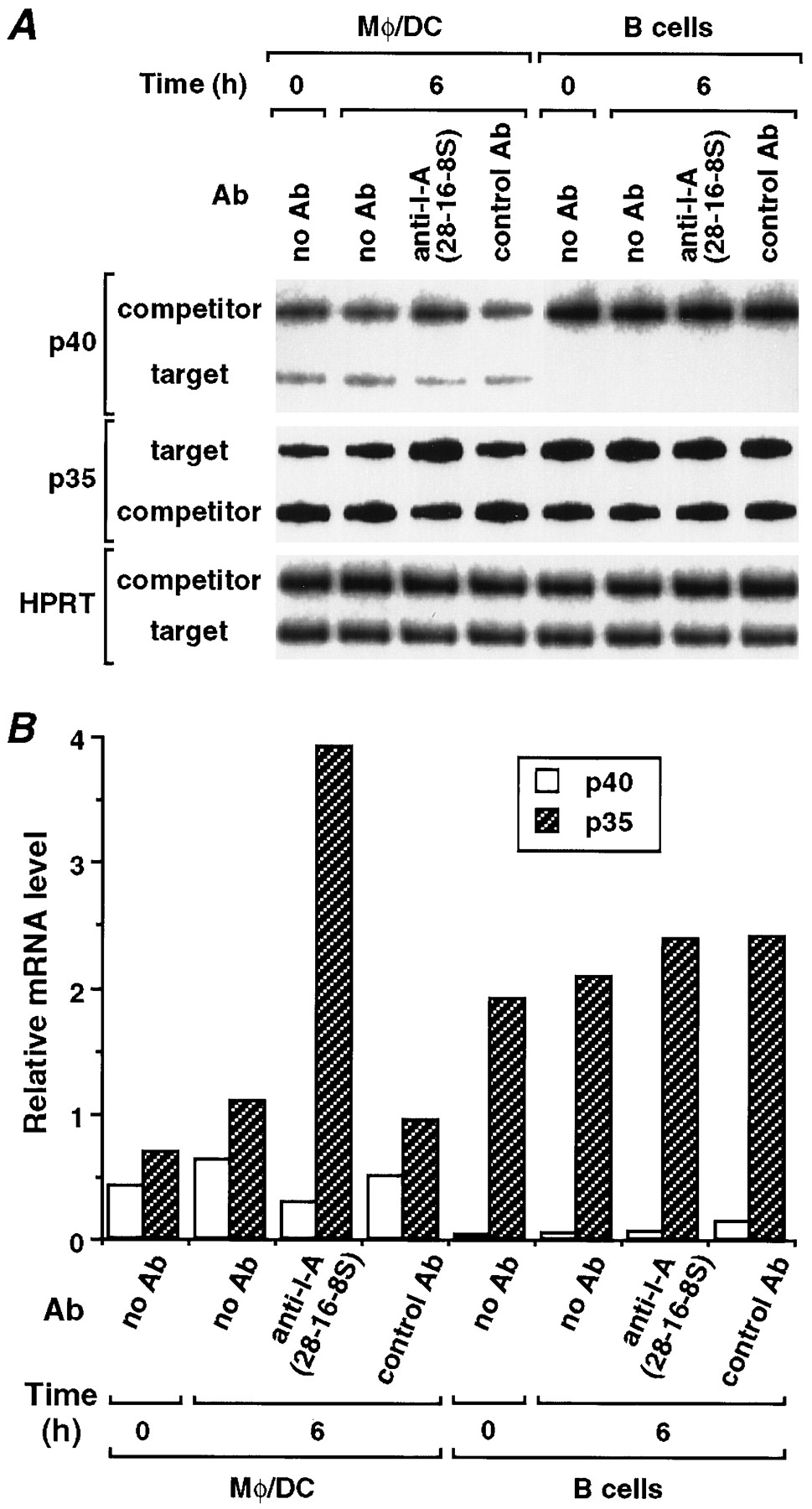 Effective Stimulation for IL-12 p35 mRNA Accumulation and