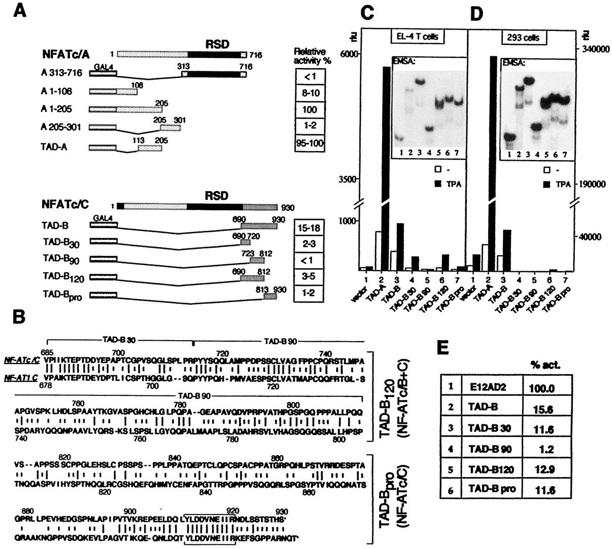 Multiple NF-ATc Isoforms with Individual Transcriptional Properties