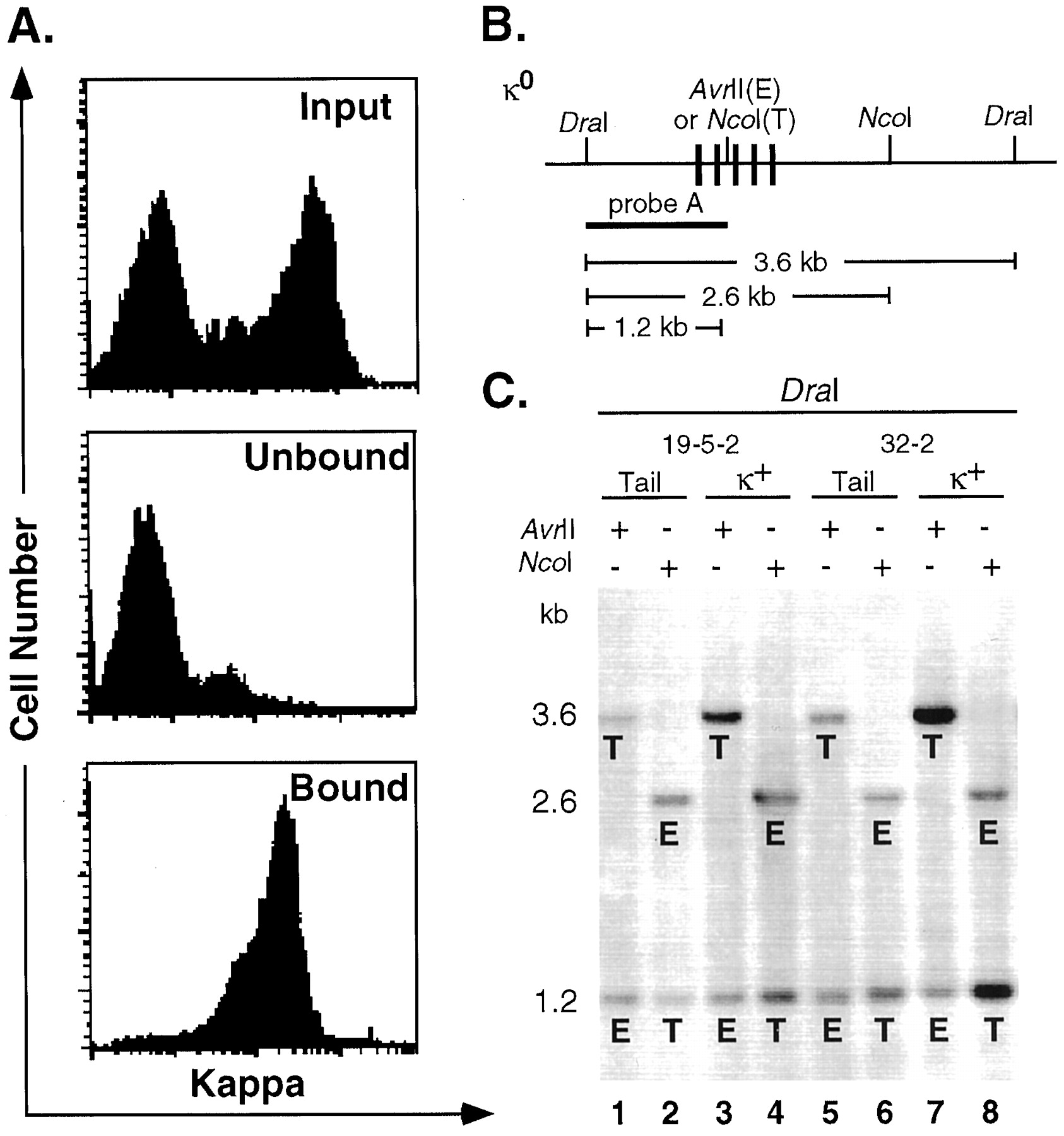 High-Level Rearrangement and Transcription of Yeast