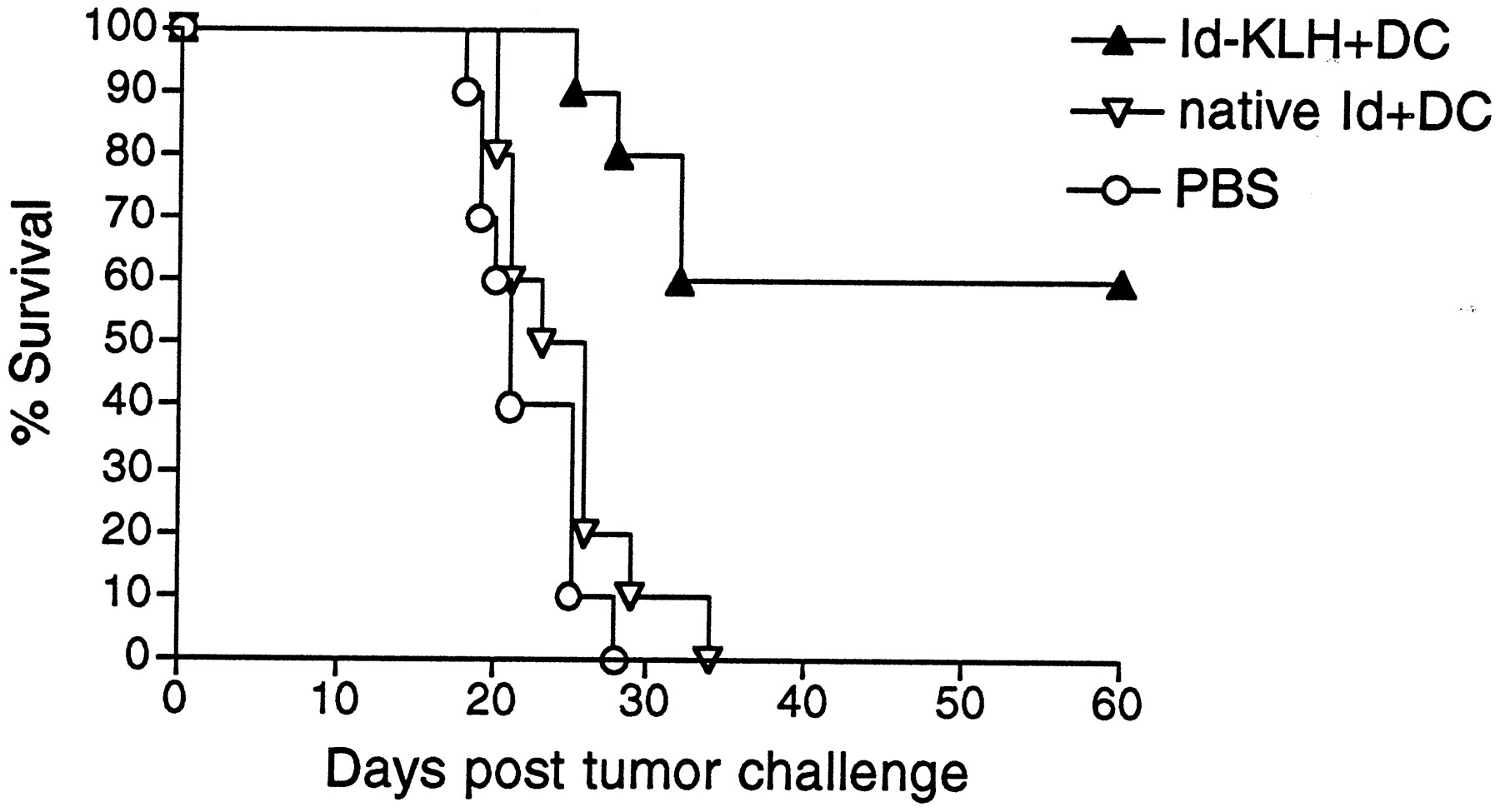 Linkage of Foreign Carrier Protein to a Self-Tumor Antigen Enhances