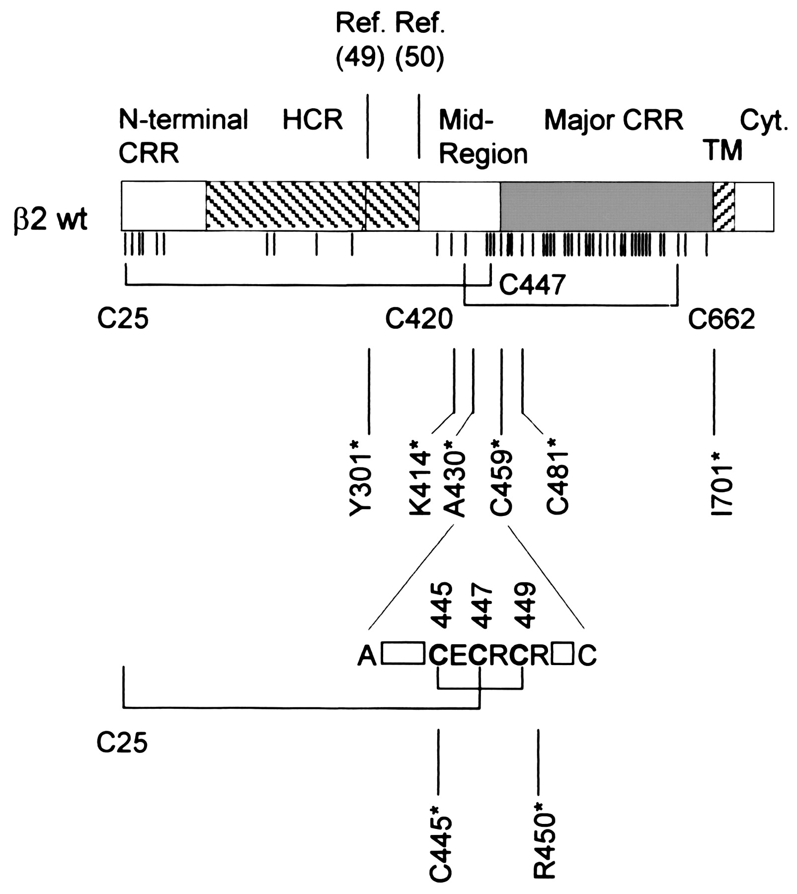 Effect Of Integrin 2 Subunit Truncations On Lfa 1 Cd11a Cd18 And Suzuki Lt125 Wiring Diagram Download Figure