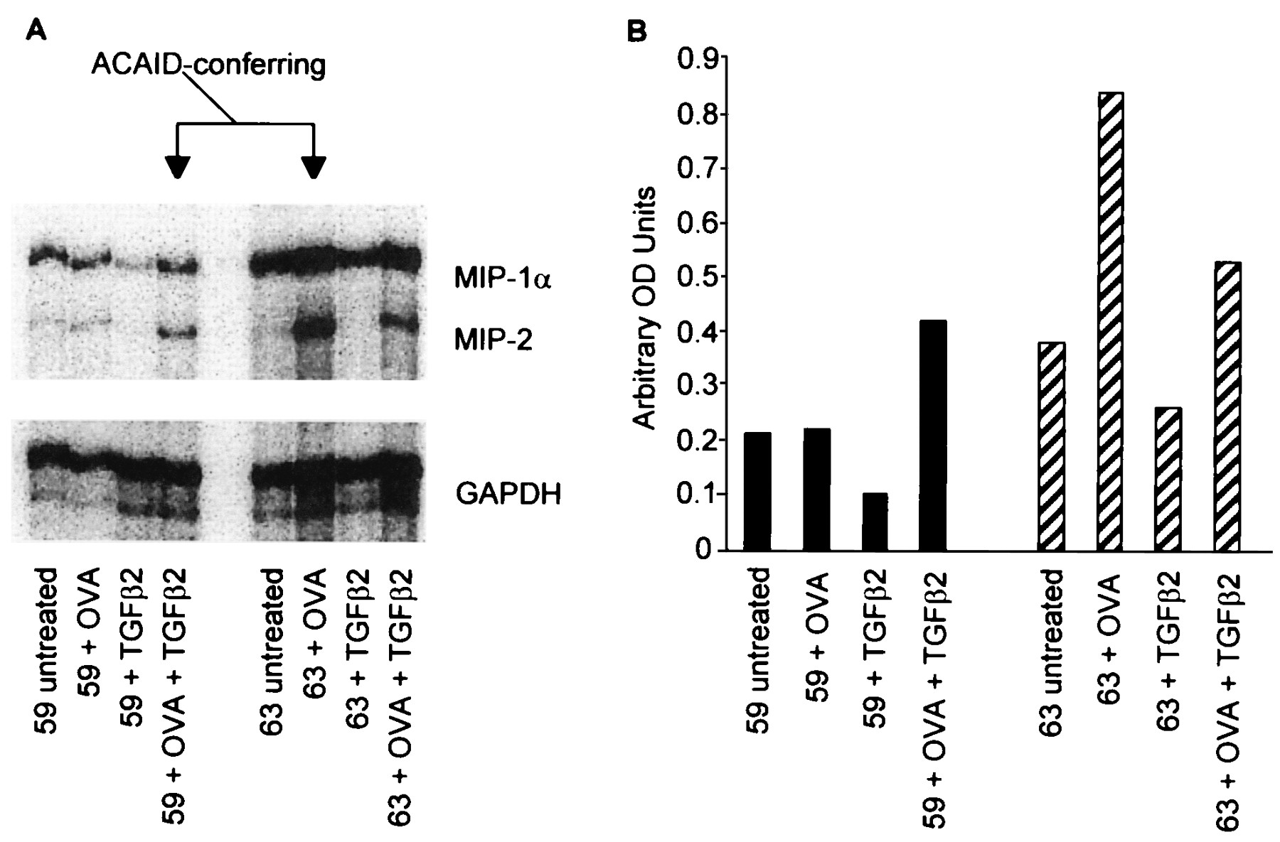 mip 2 recruits nkt cells to the spleen during tolerance induction