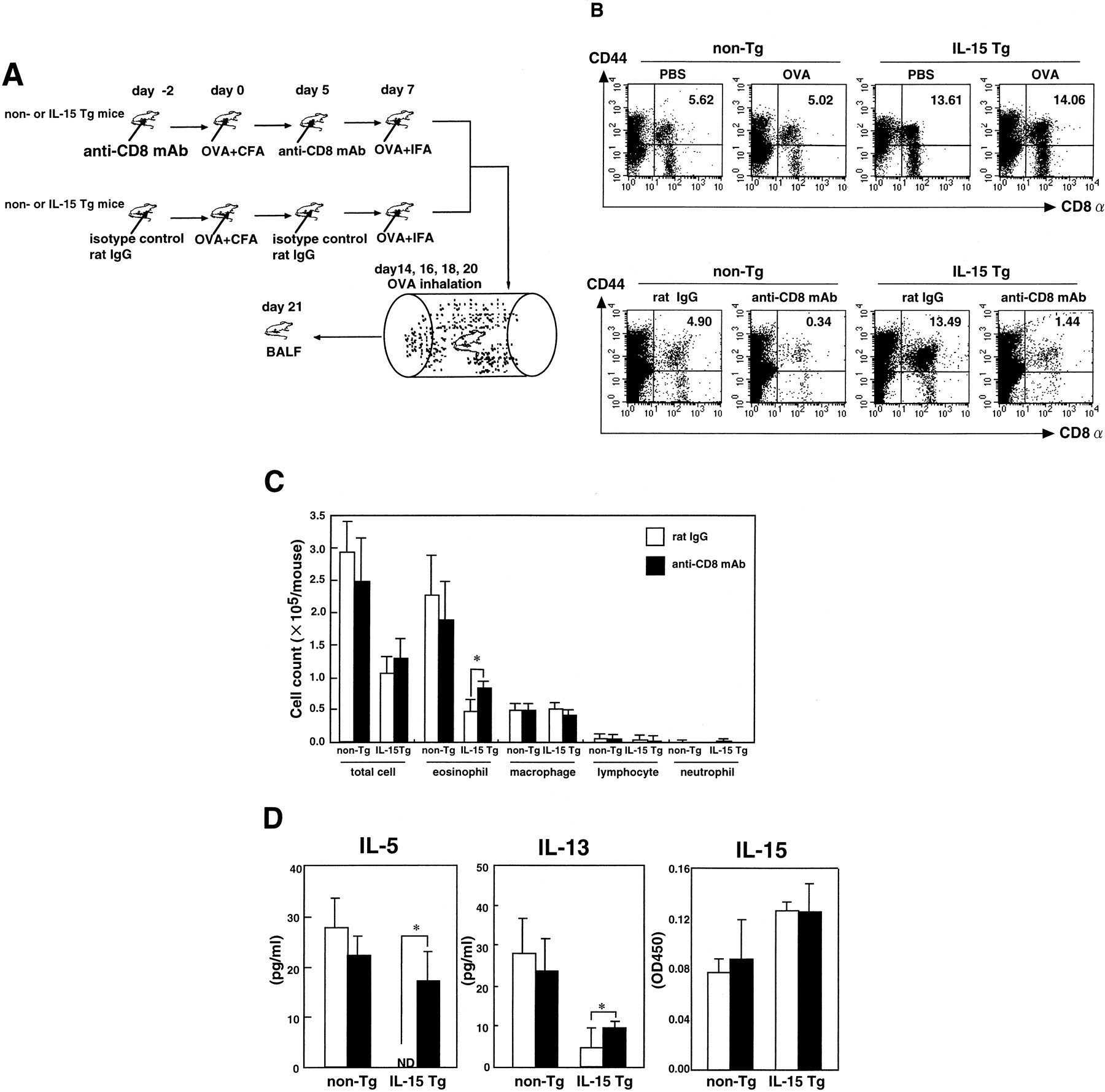 Overexpression of IL-15 In Vivo Enhances Tc1 Response, Which