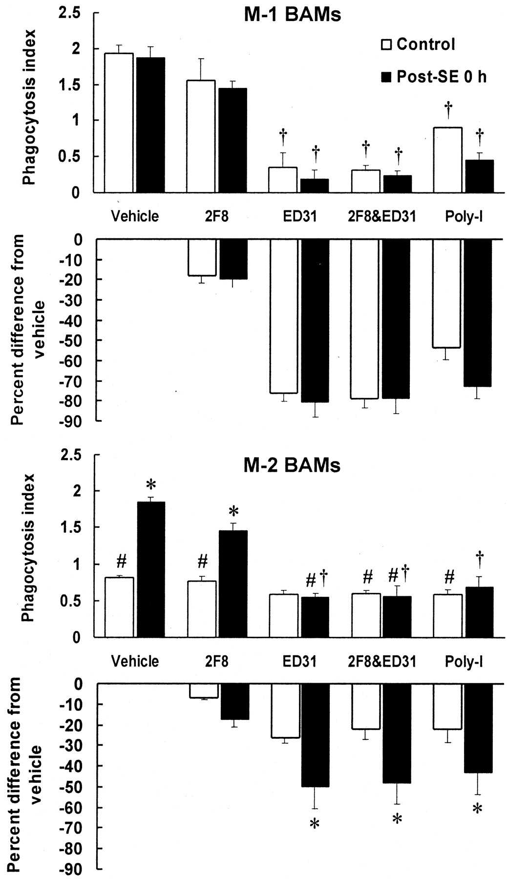 C57BL/6 and BALB/c Bronchoalveolar Macrophages Respond Differently ...