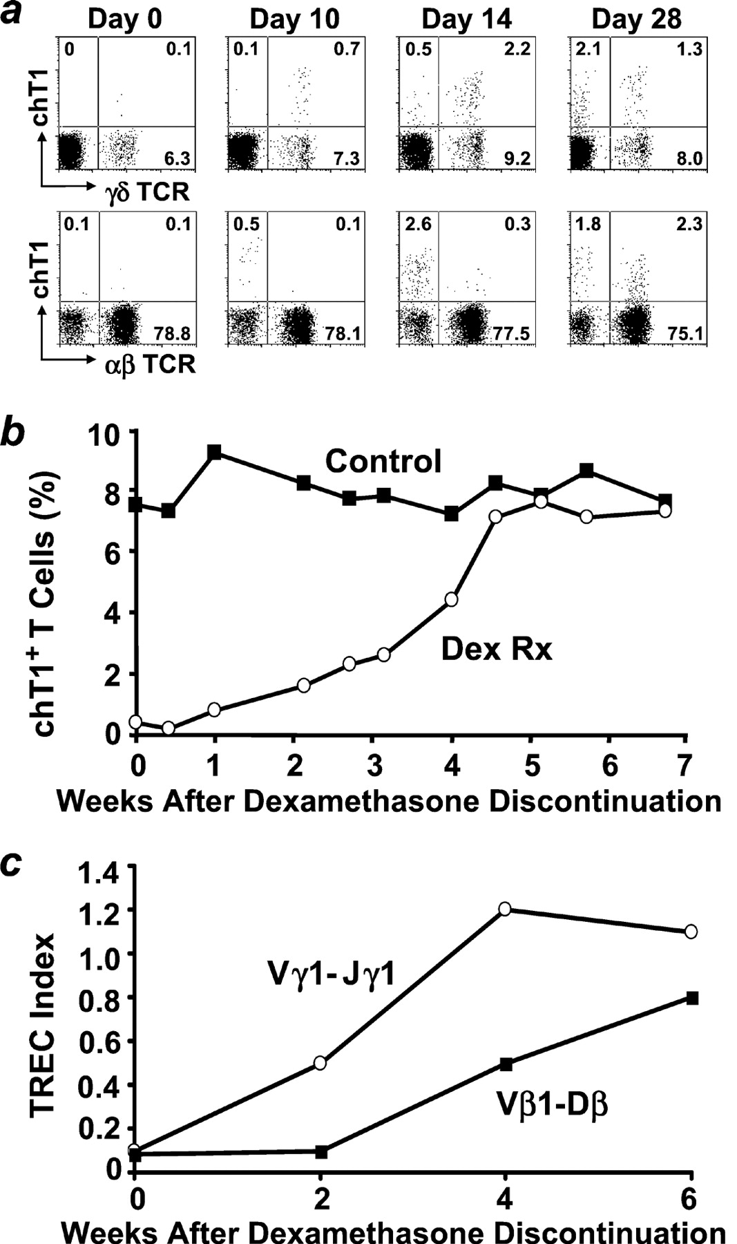 Reversible Disruption Of Thymic Function By Steroid Treatment The