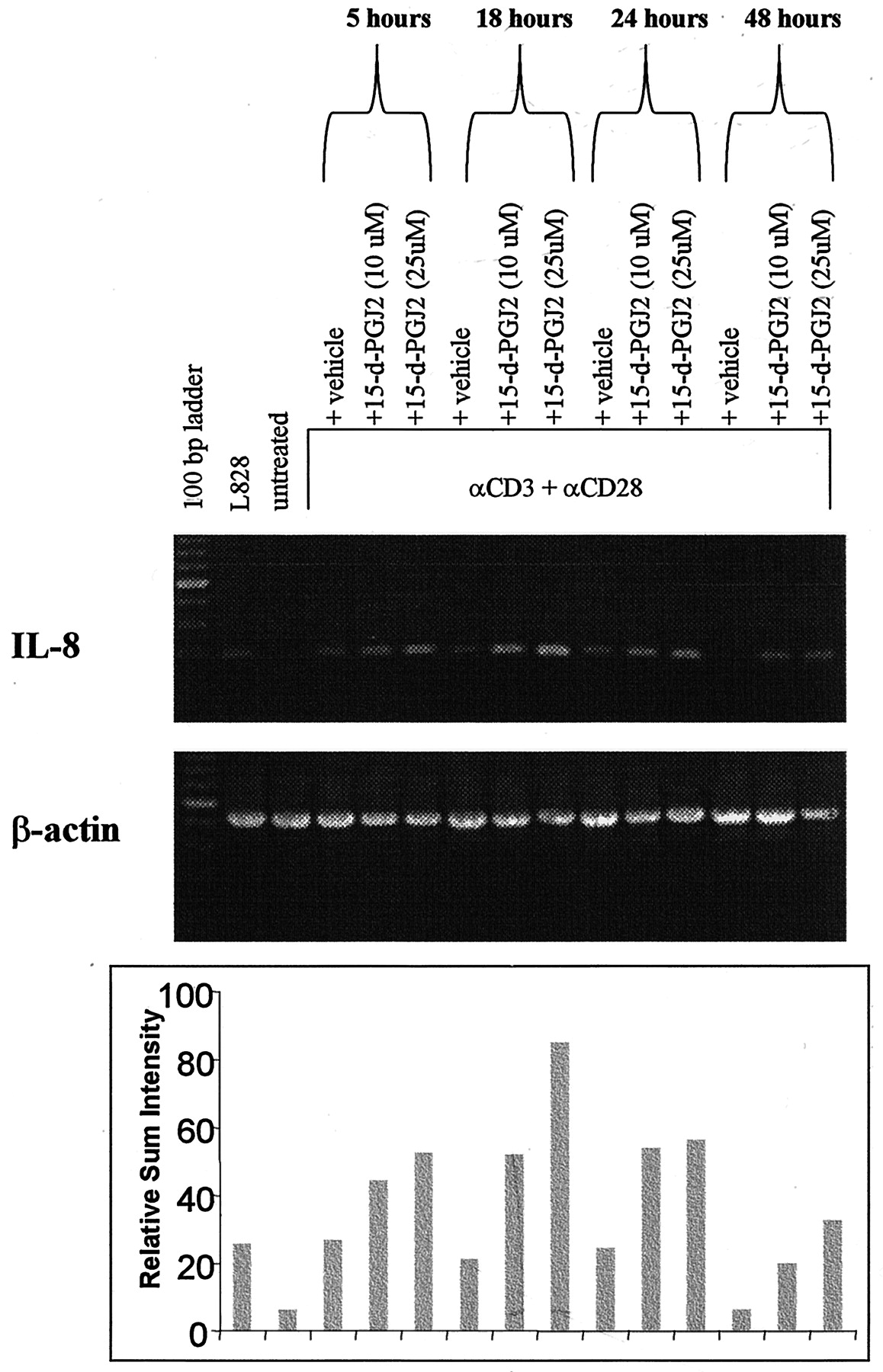 15-Deoxy-Δ12,1412,14-PGJ2 Induces IL-8 Production in Human T Cells