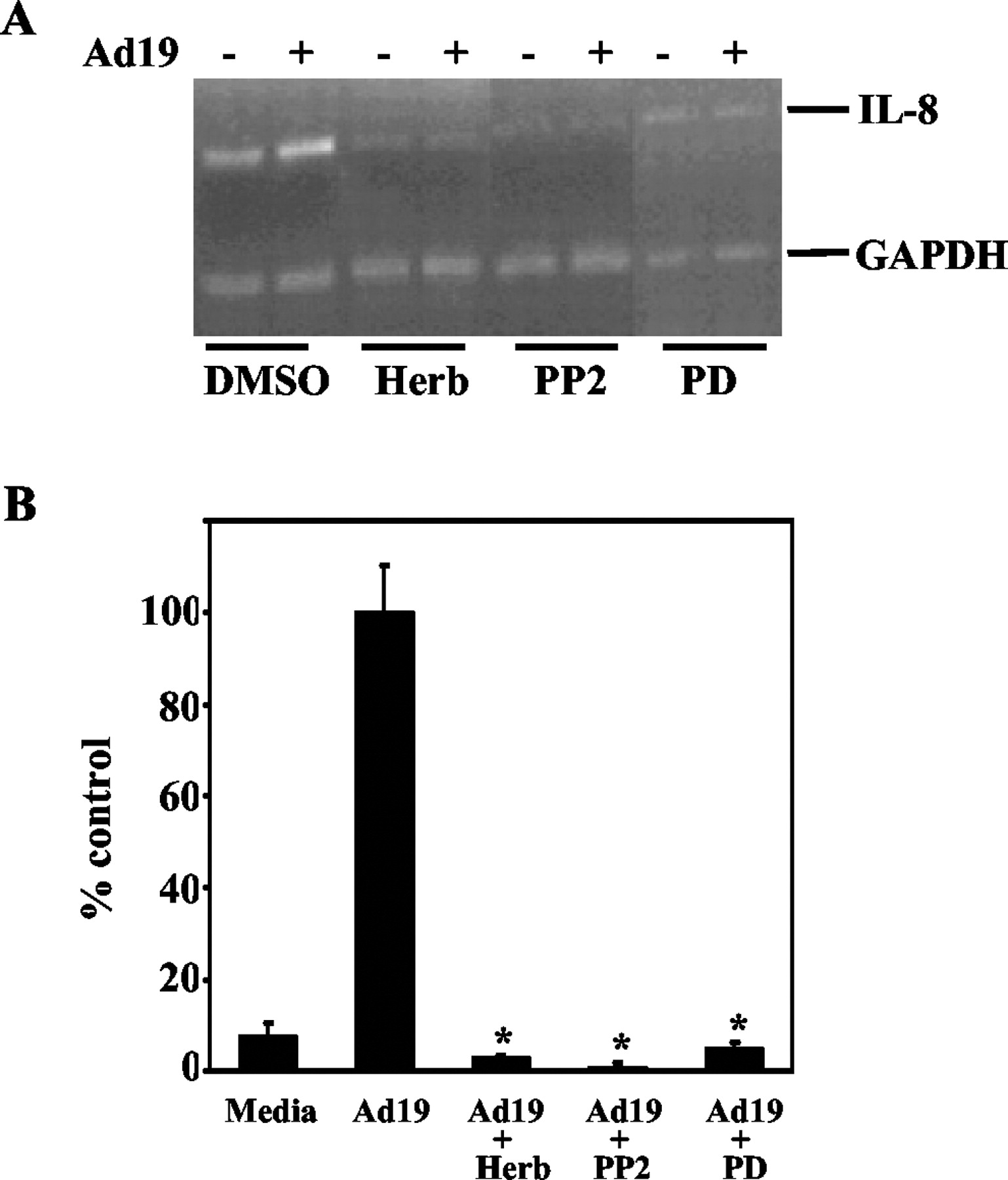 corneal il 8 expression following adenovirus infection is mediated