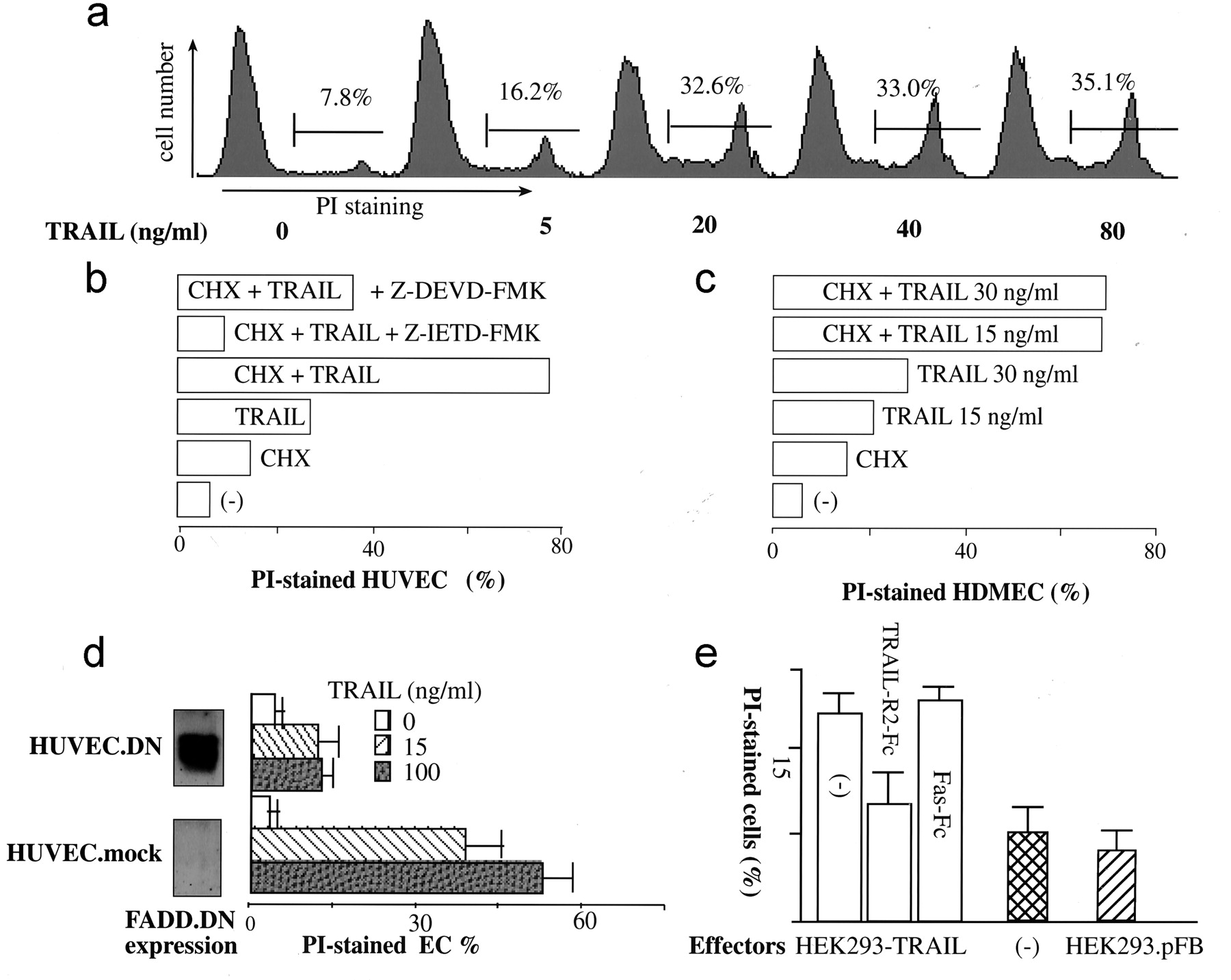 TRAIL Induces Apoptosis and Inflammatory Gene Expression in