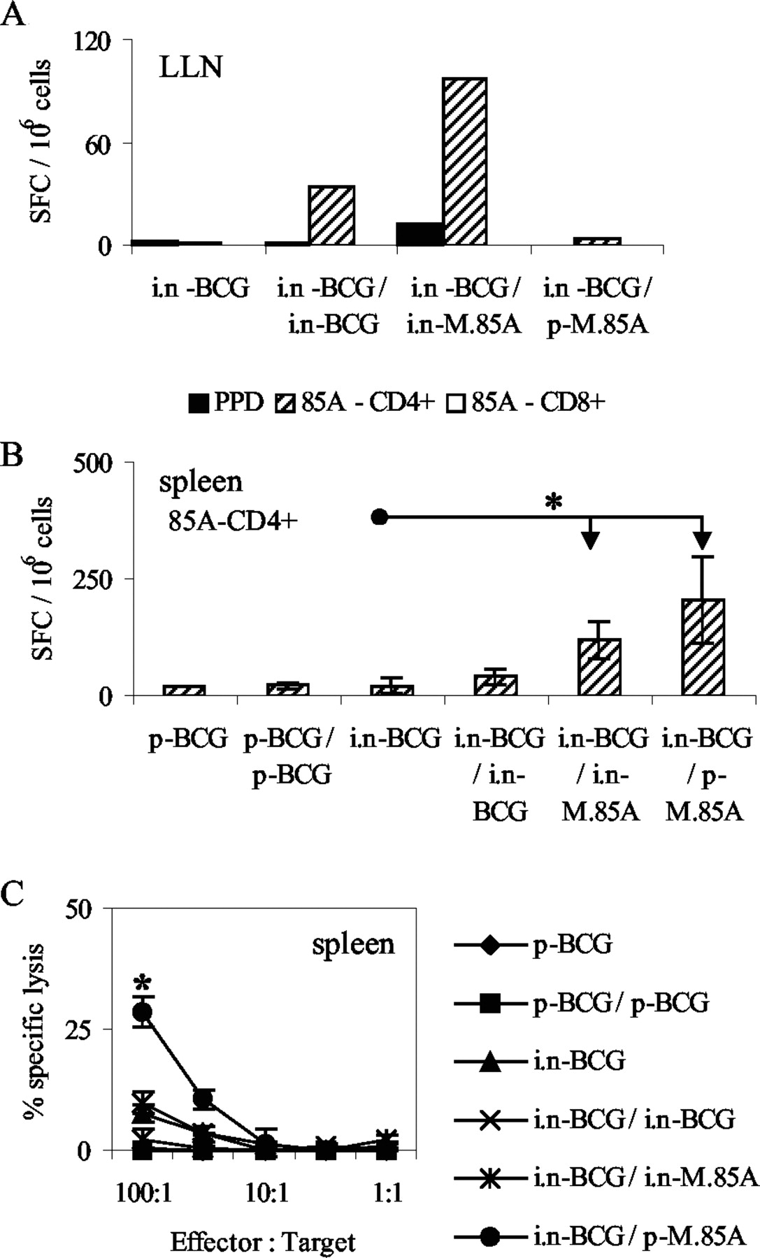 Differential Immune Responses and Protective Efficacy