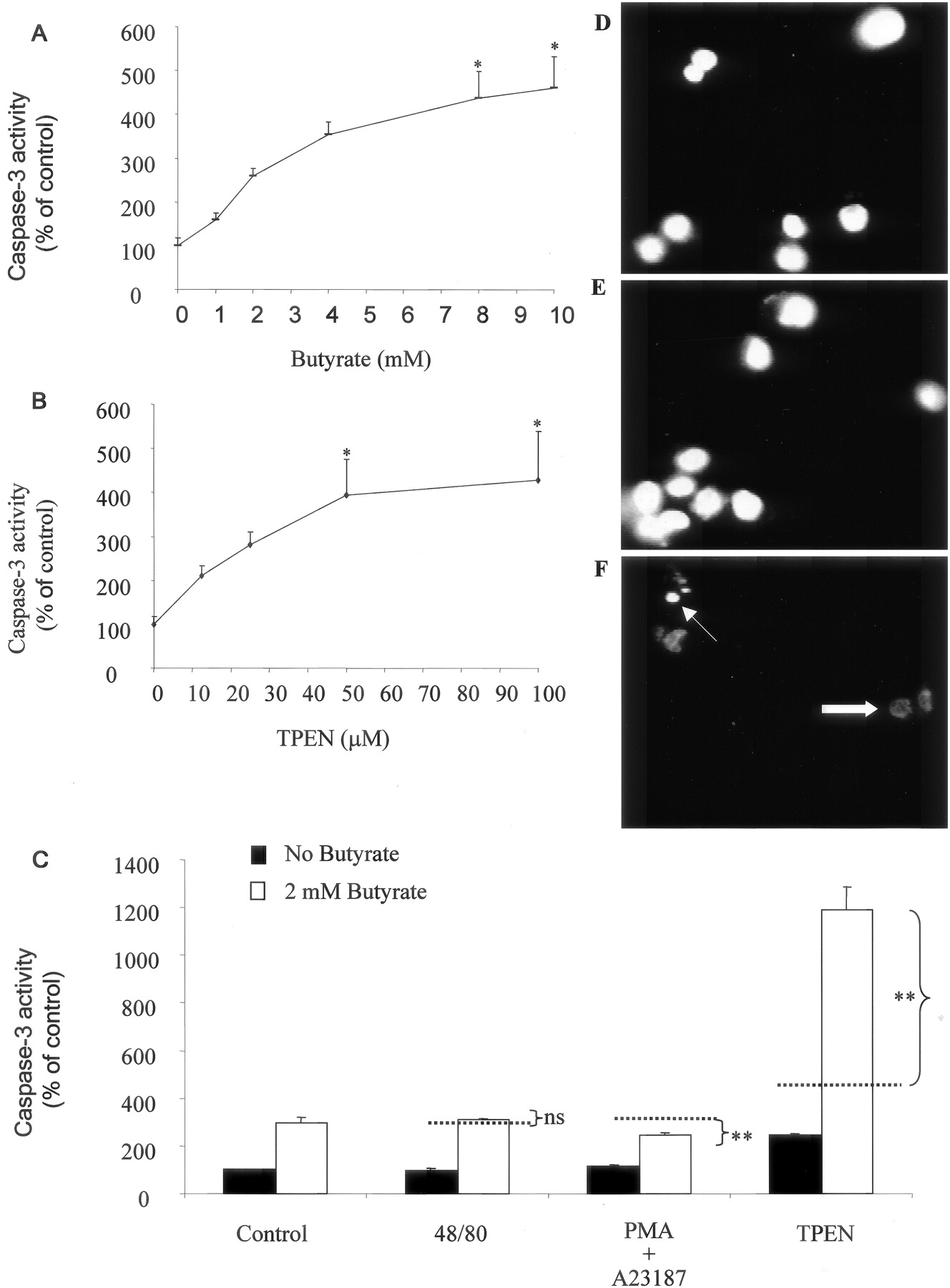 Labile Zinc And Transporter Znt4 In Mast Cell Granules Role How To Protect A Reed Switch From Specific Loads Cynergy 3 Download Figure