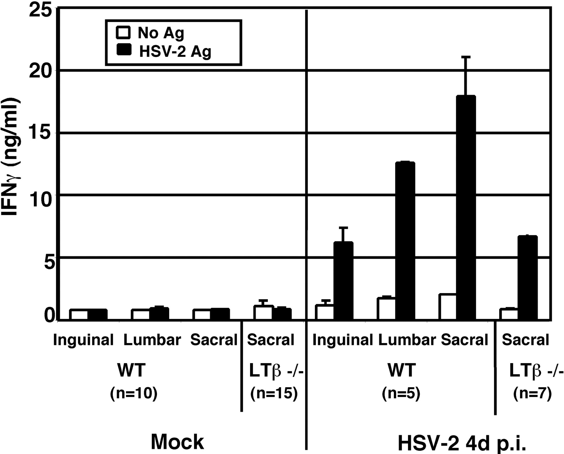 Madcam 1 Expressing Sacral Lymph Node In The Lymphotoxin Deficient