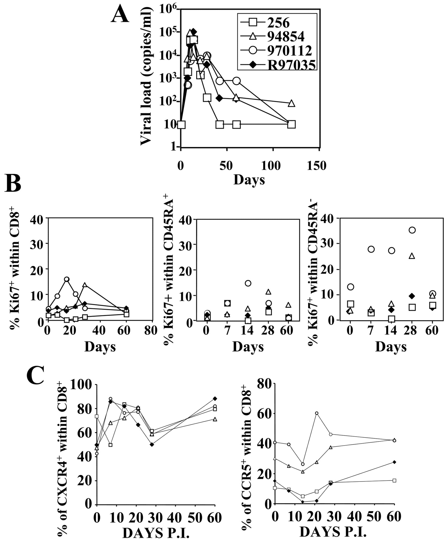 Cd8 t cell dynamics during primary simian immunodeficiency virus download figure fandeluxe Gallery
