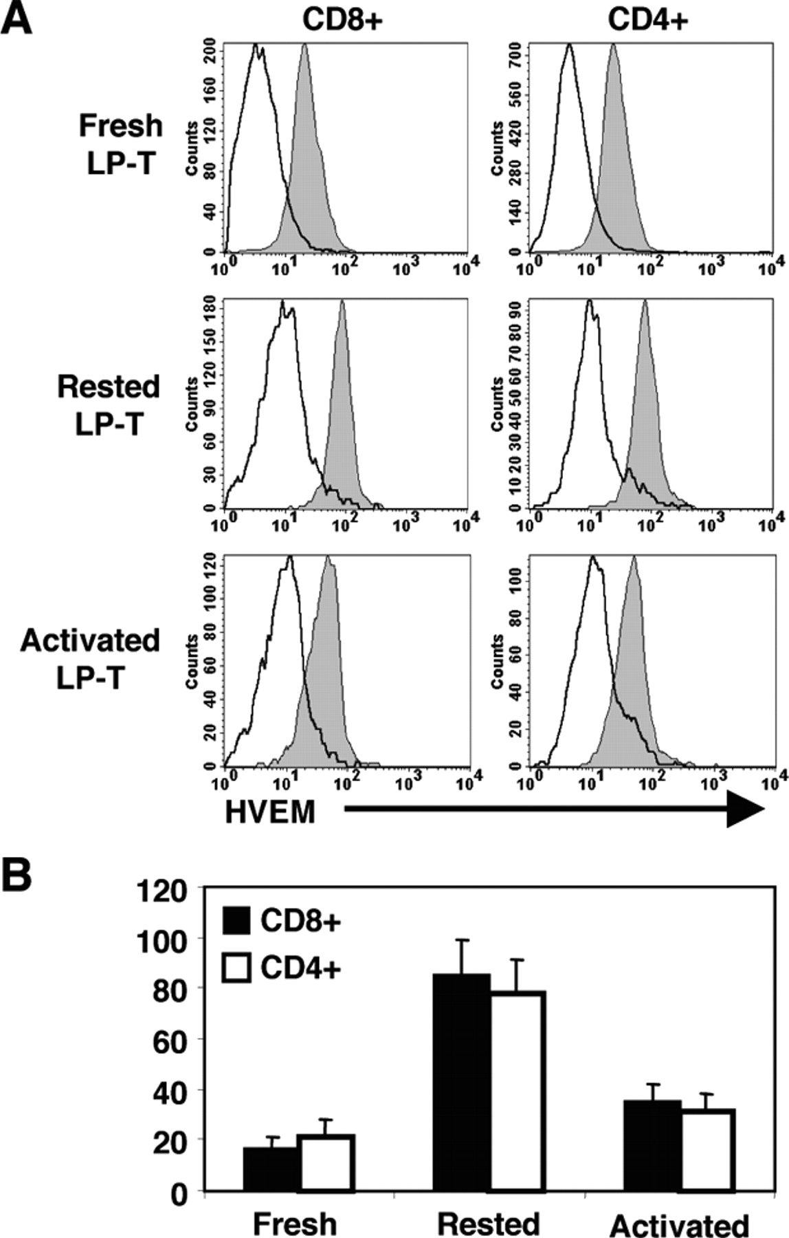 LIGHT Is Constitutively Expressed on T and NK Cells in the Human Gut