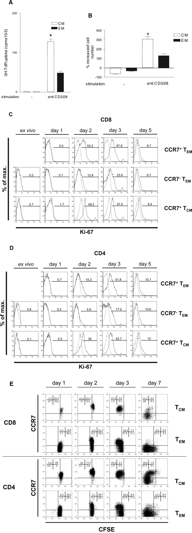 Dynamic Differentiation of Activated Human Peripheral Blood