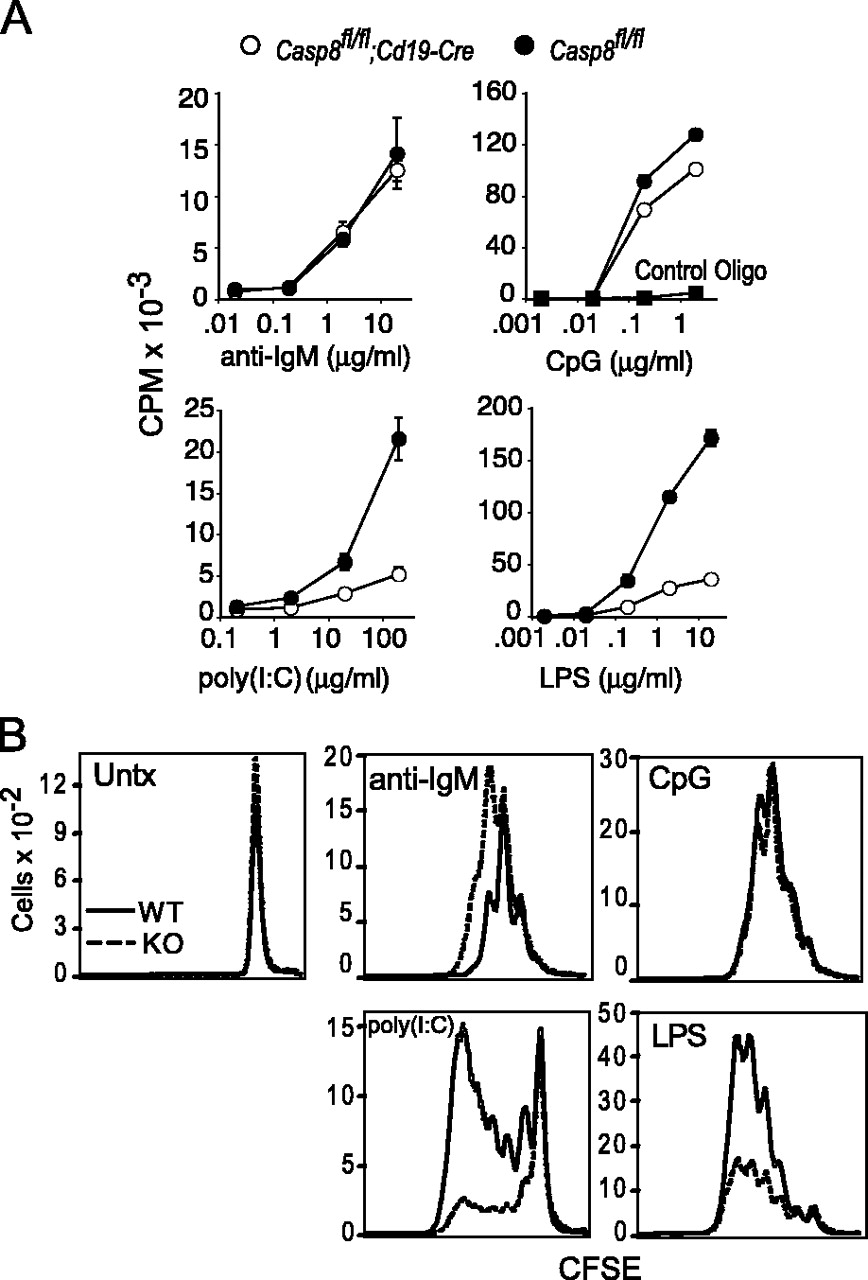 Cutting Edge Innate Immunity Conferred By B Cells Is Regulated Wiring Diagram Oreck Upright Download Figure