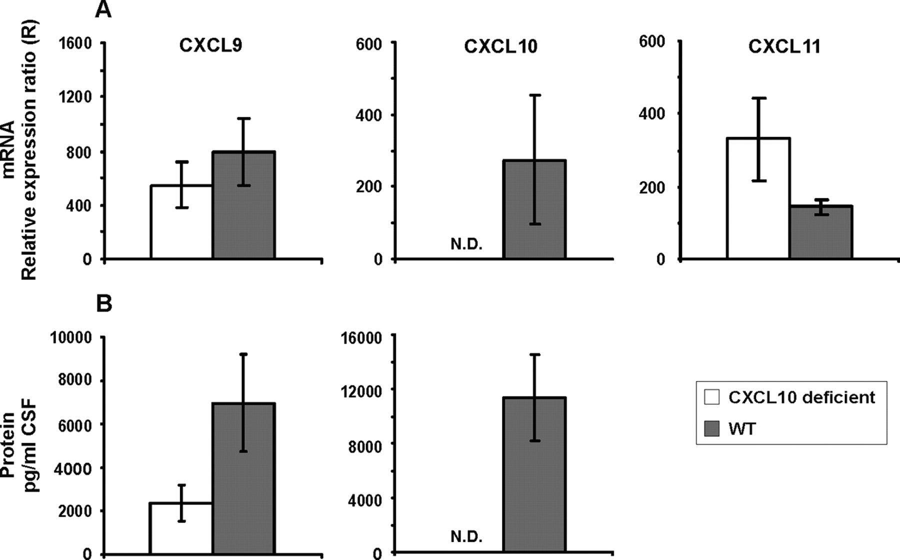 CXCL10 Is the Key Ligand for CXCR3 on CD8+ Effector T