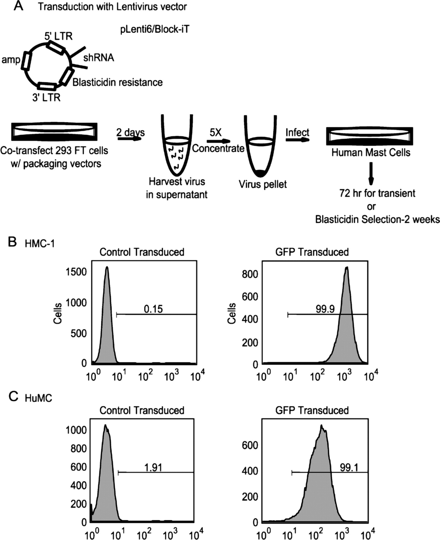 cutting edge lentiviral short hairpin rna silencing of pten in RNA Def download figure