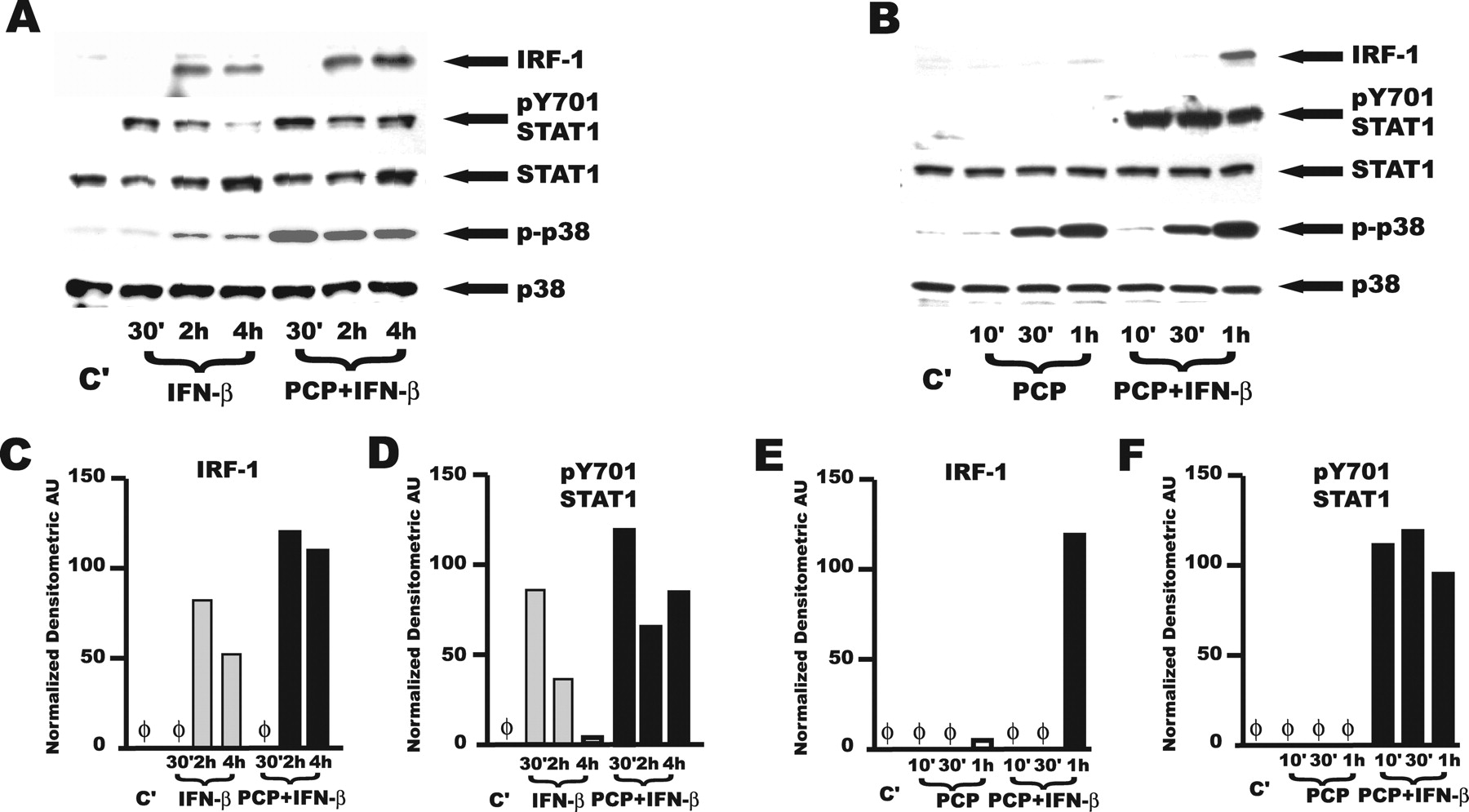 Conserved Nontypeable Haemophilus influenzae-Derived TLR2-Binding