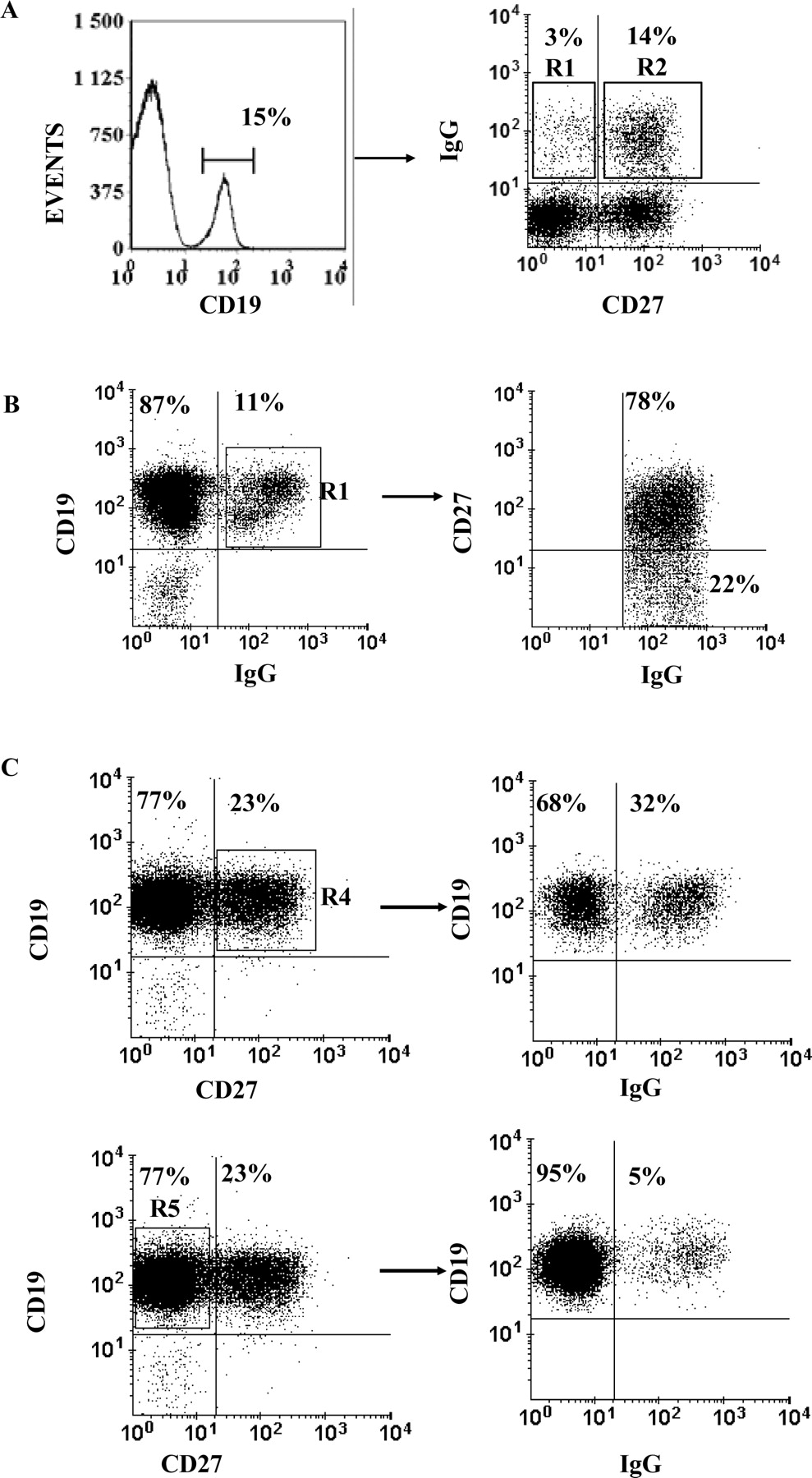 a new memory cd27 u2212igg  b cell population in peripheral