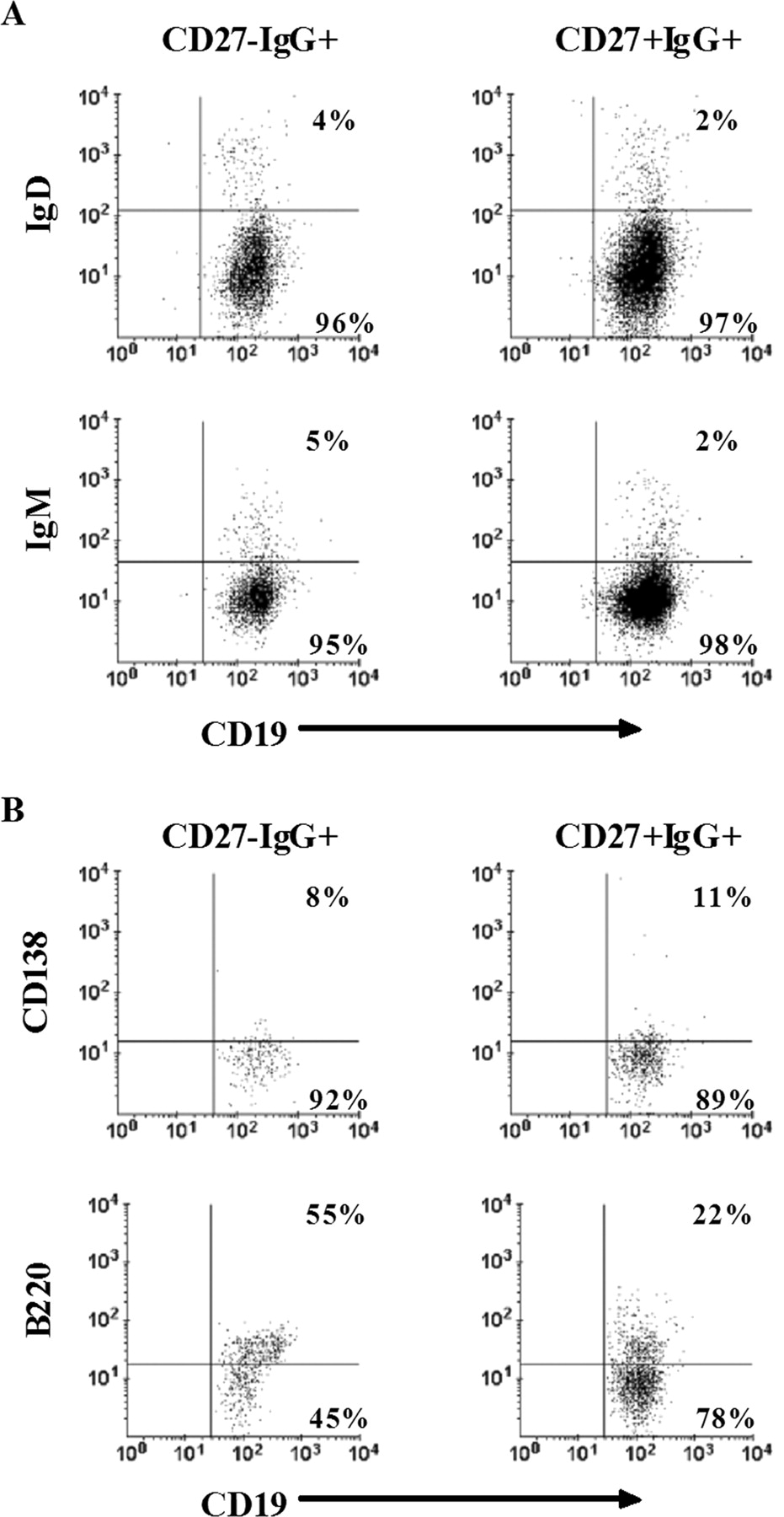 A New Memory Cd27 Igg B Cell Population In Peripheral