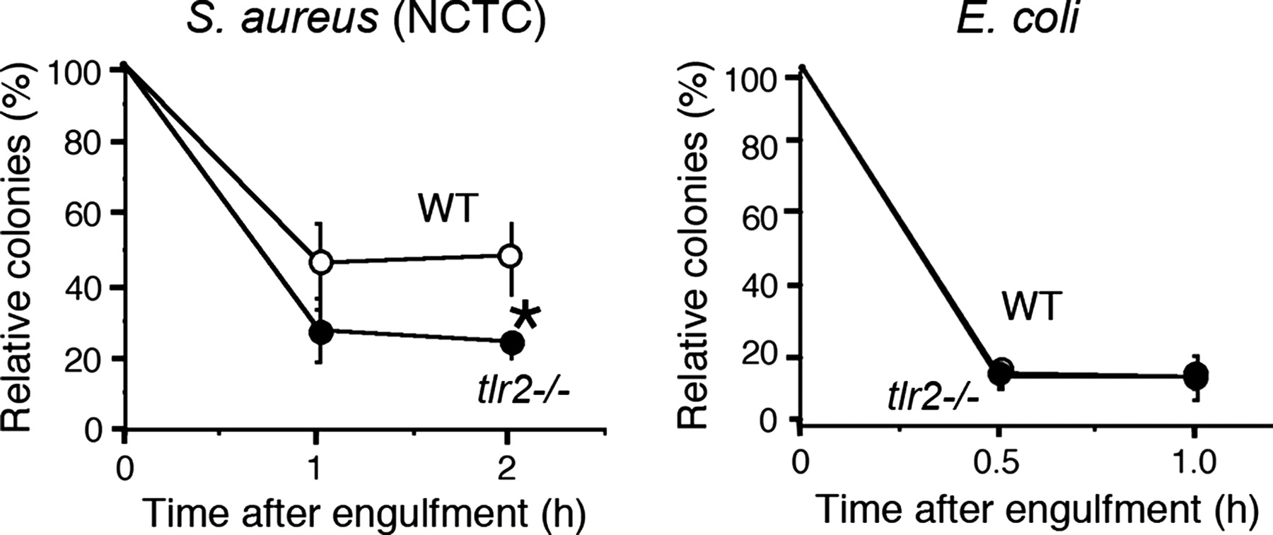 Tlr2 mediated survival of staphylococcus aureus in macrophages a download figure ccuart Choice Image