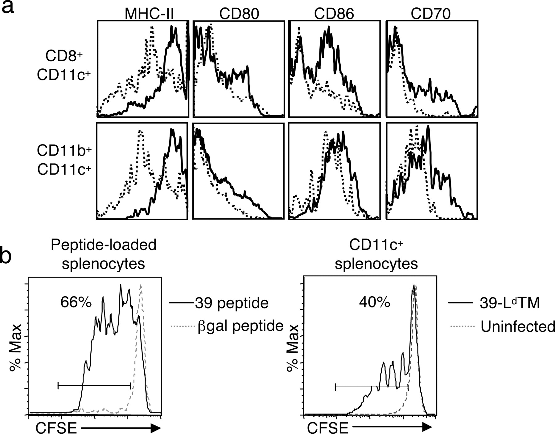 Baculovirus-Infected Insect Cells Expressing Peptide-MHC