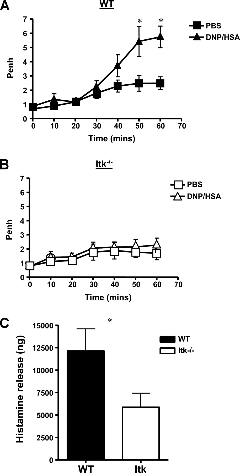 The Tec Family Kinase, IL-2-Inducible T Cell Kinase, Differentially