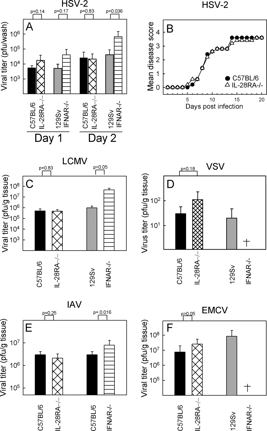 An Important Role for Type III Interferon (IFN-λ/IL-28) in