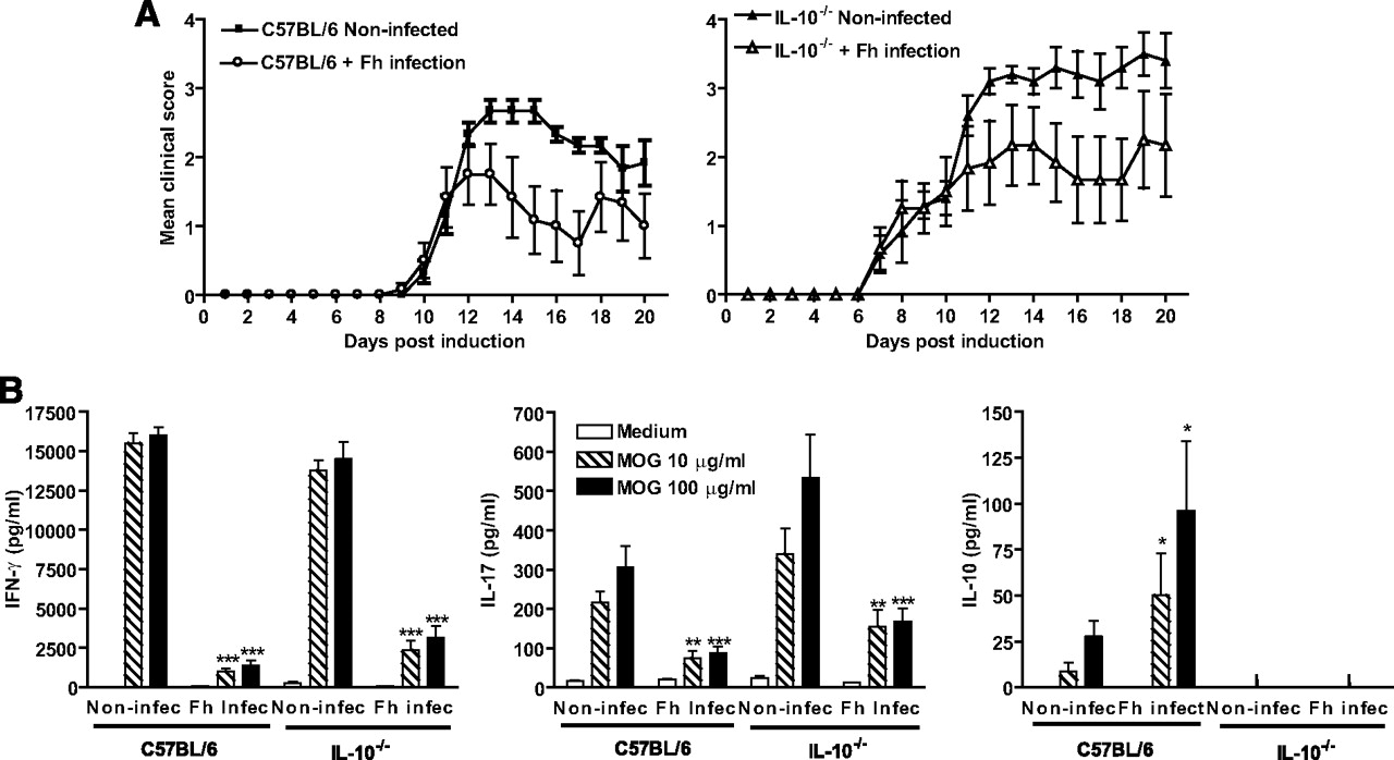 Infection with a helminth parasite attenuates autoimmunity through download figure pooptronica Image collections
