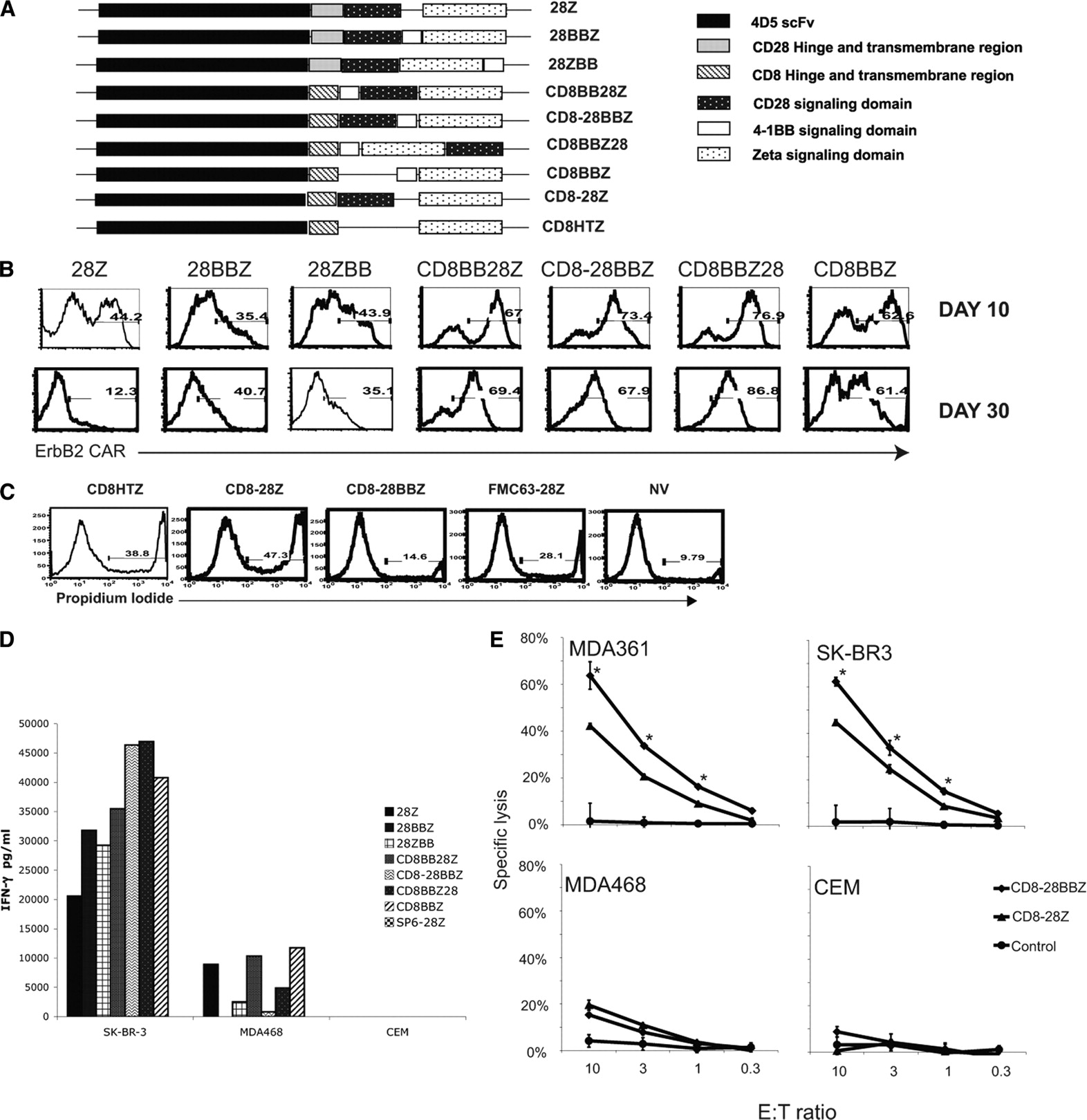 A Herceptin-Based Chimeric Antigen Receptor with Modified Signaling ...