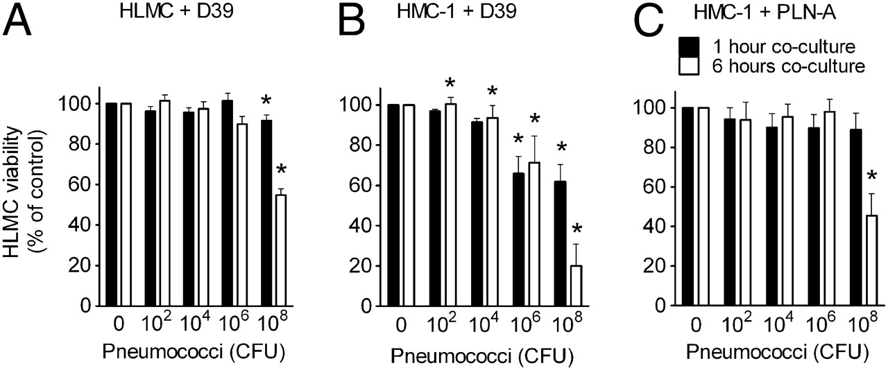 Human Lung Mast Cells Mediate Pneumococcal Cell Death in Response to