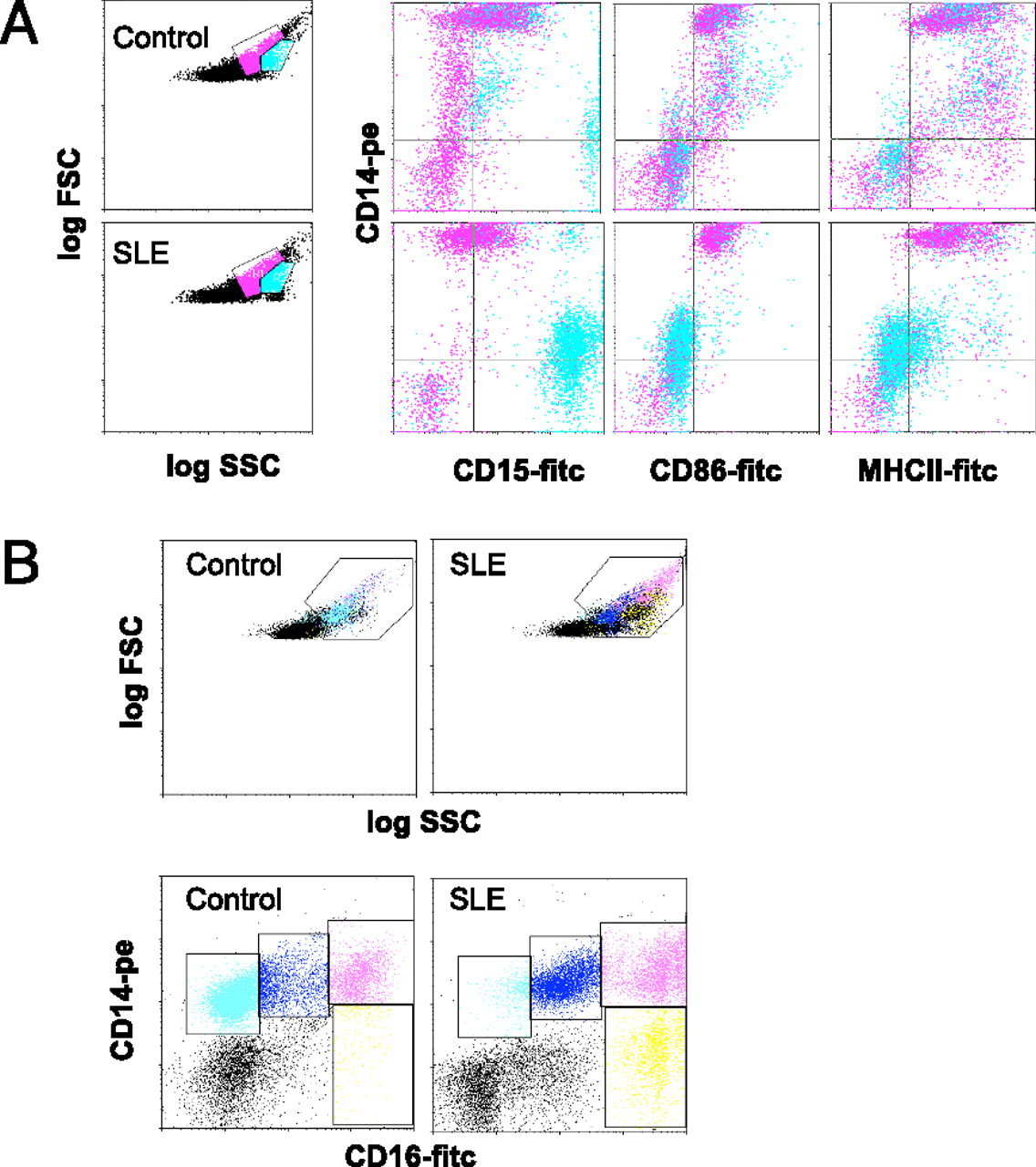 A Distinct Subset of Proinflammatory Neutrophils Isolated