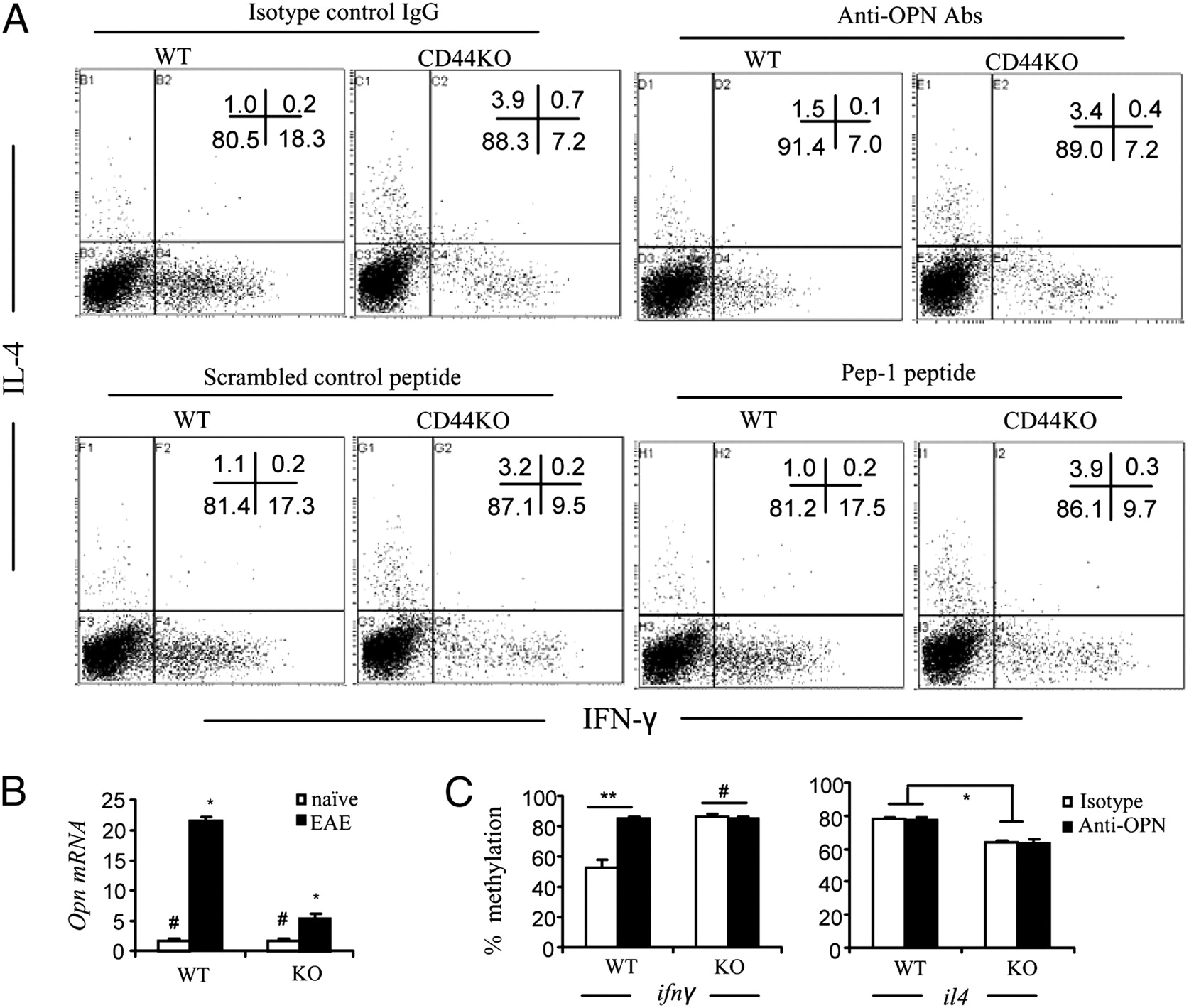 CD44 Reciprocally Regulates the Differentiation of