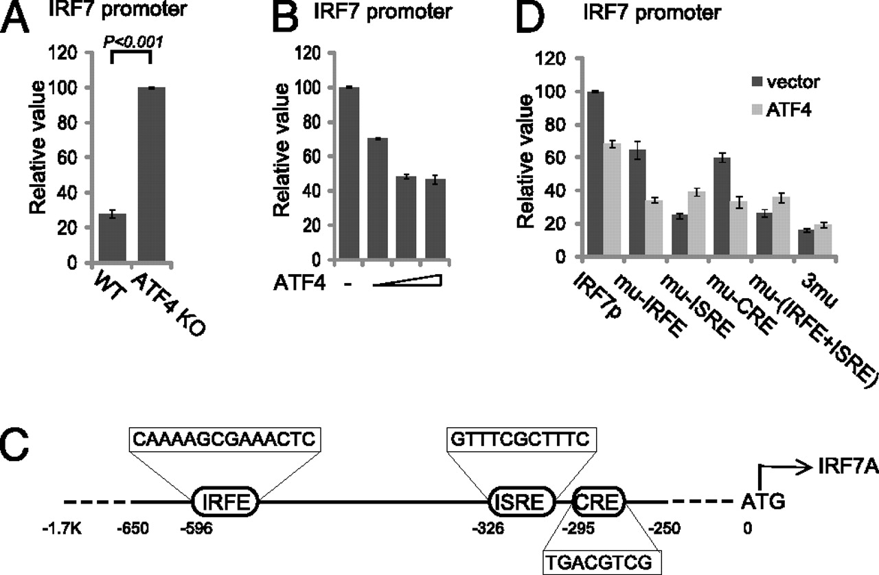Negative Regulation of IRF7 Activation by Activating