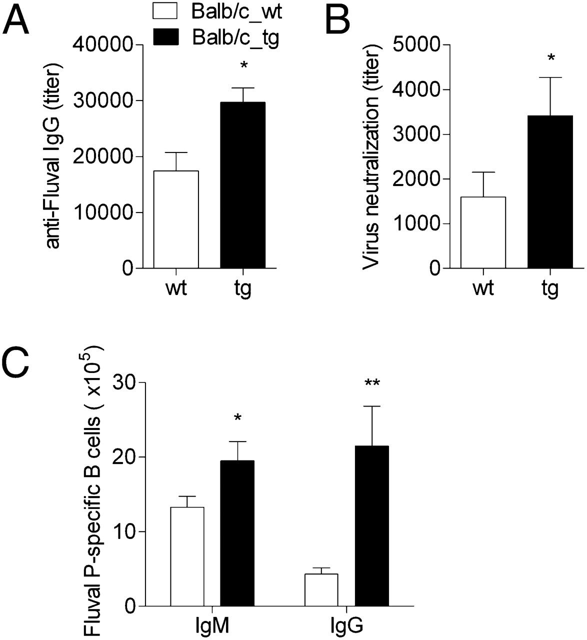 Neonatal FcR Overexpression Boosts Humoral Immune Response in