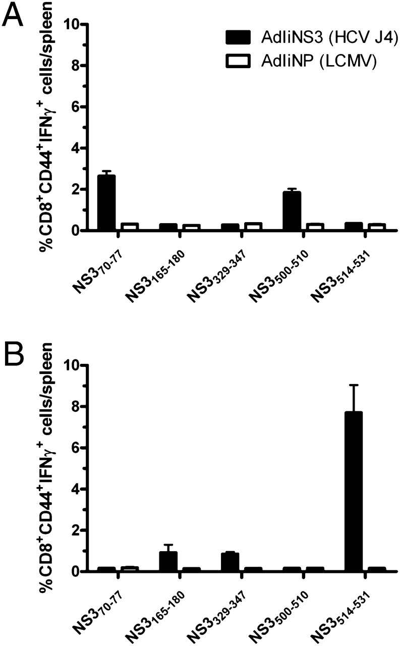 Enhanced and Sustained CD8+ T Cell Responses with an