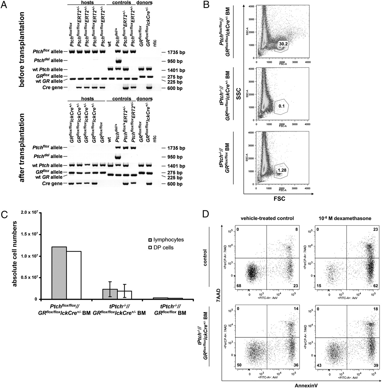 T Cell Development Critically Depends On Prethymic Stromal Patched Ntc Selection Criteria Steady State Current Download Figure
