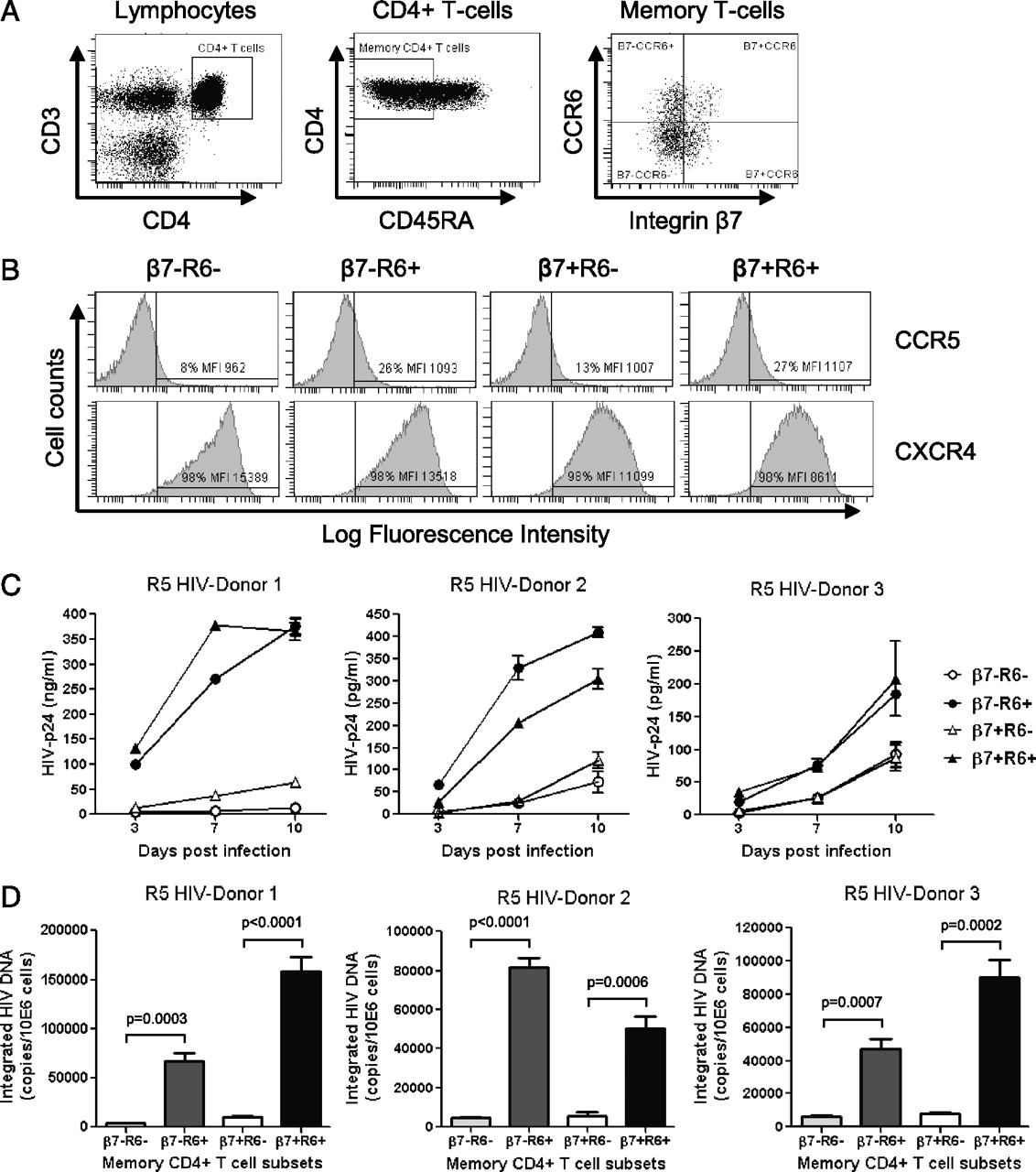 Memory CCR6+CD4+ T Cells Are Preferential Targets for