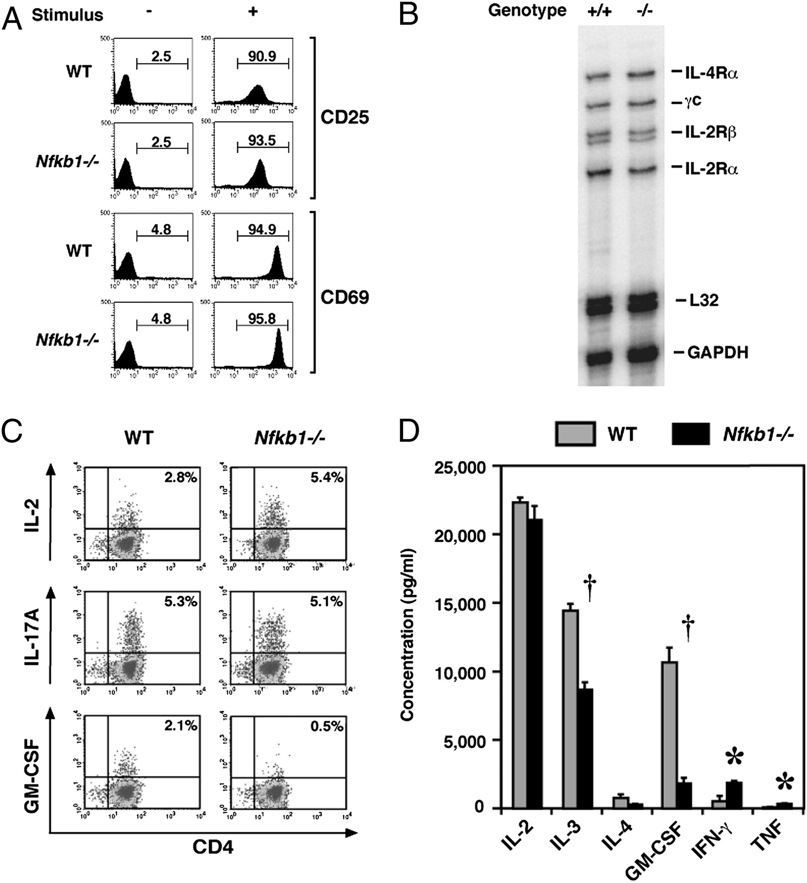 Differentiation of Inflammatory Dendritic Cells Is