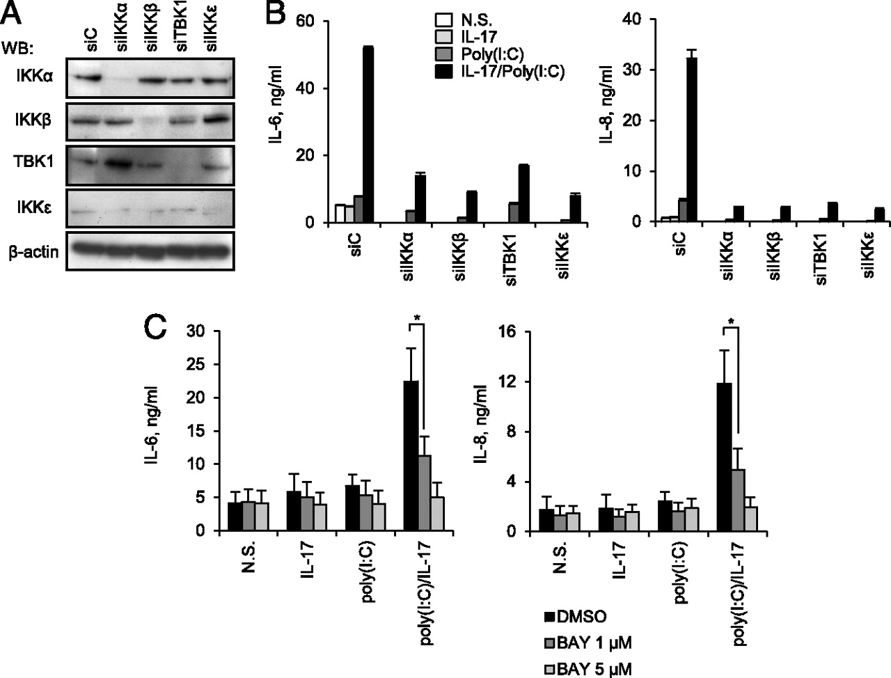 IL-17 Boosts Proinflammatory Outcome of Antiviral Response