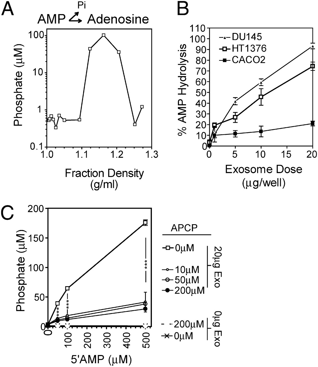 Cancer Exosomes Express CD39 and CD73, Which Suppress T