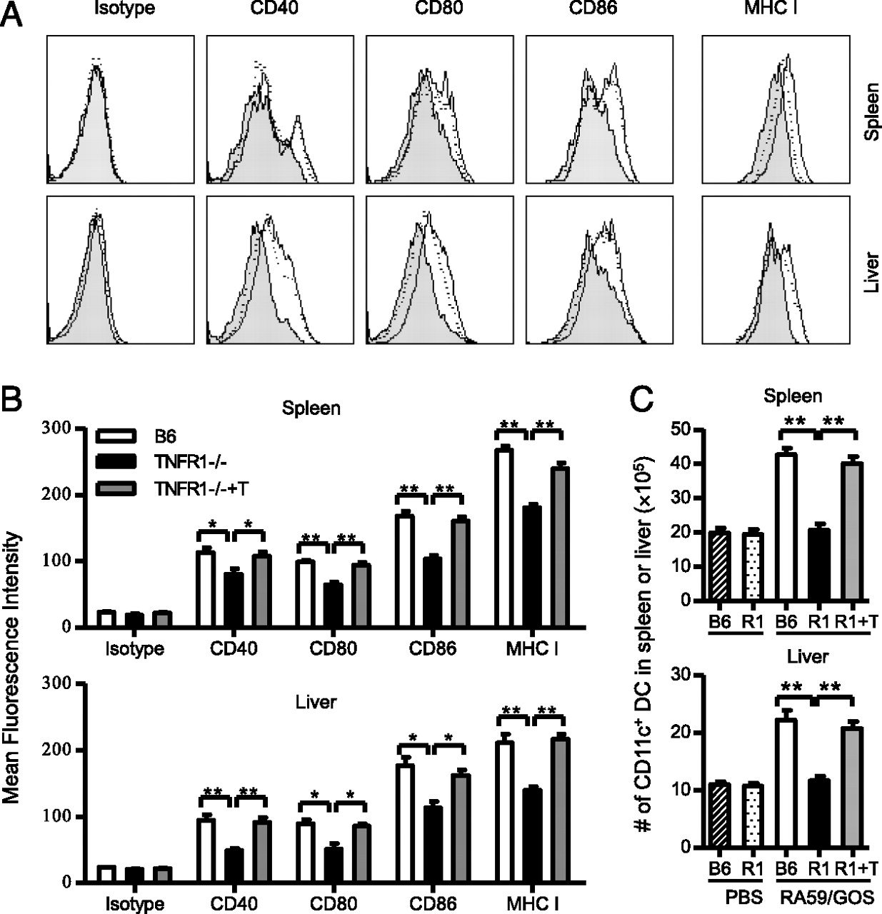 Tnf Receptor 1 Mediates Dendritic Cell Maturation And Cd8 T Figure 4 The Circuit Of Fig 3 But With R1 Replaced By A Short Download