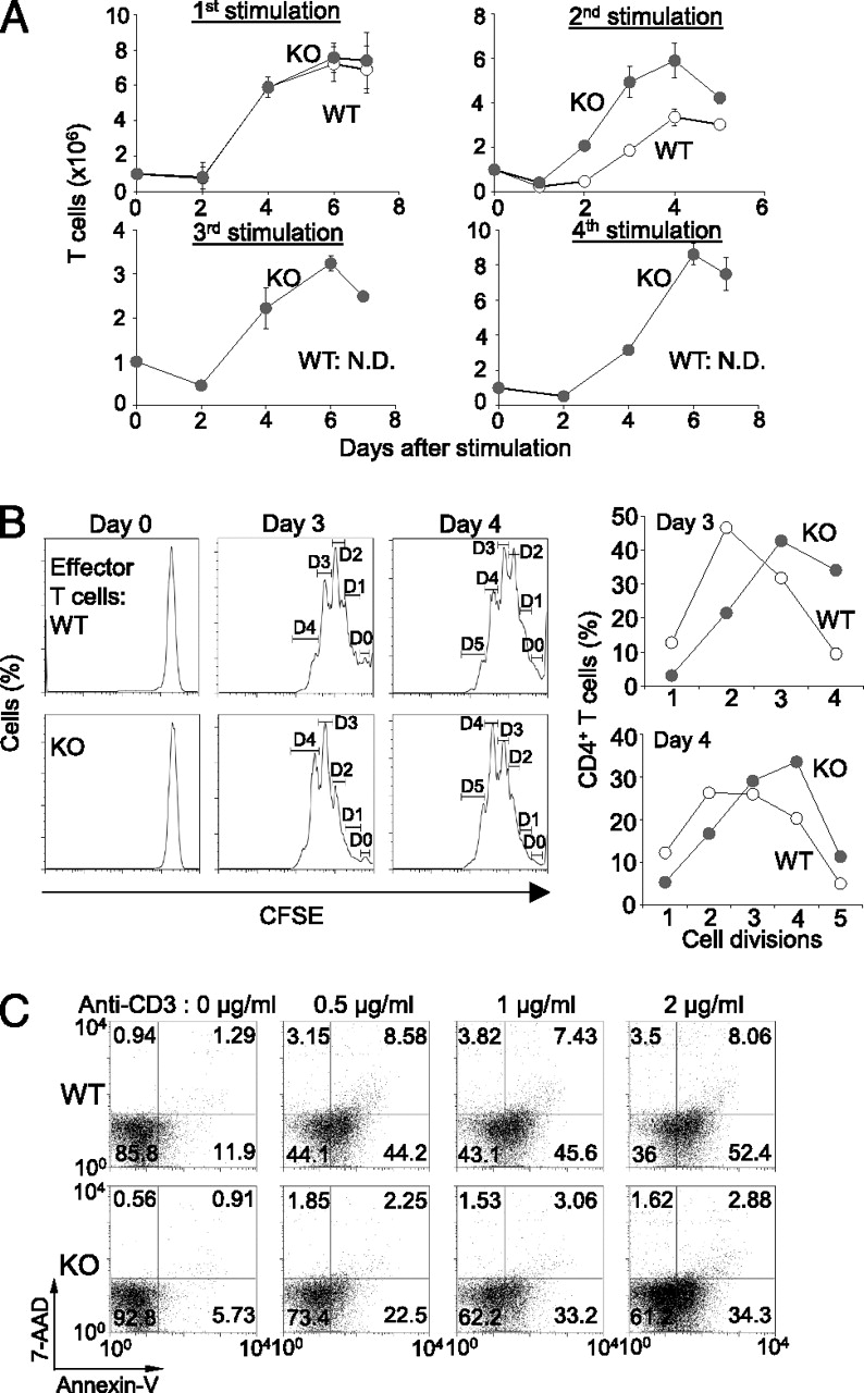Orai1 Deficiency Impairs Activated T Cell Death And Enhances Lt Pro Dual Function Dark 02r 14 Gr Download Figure