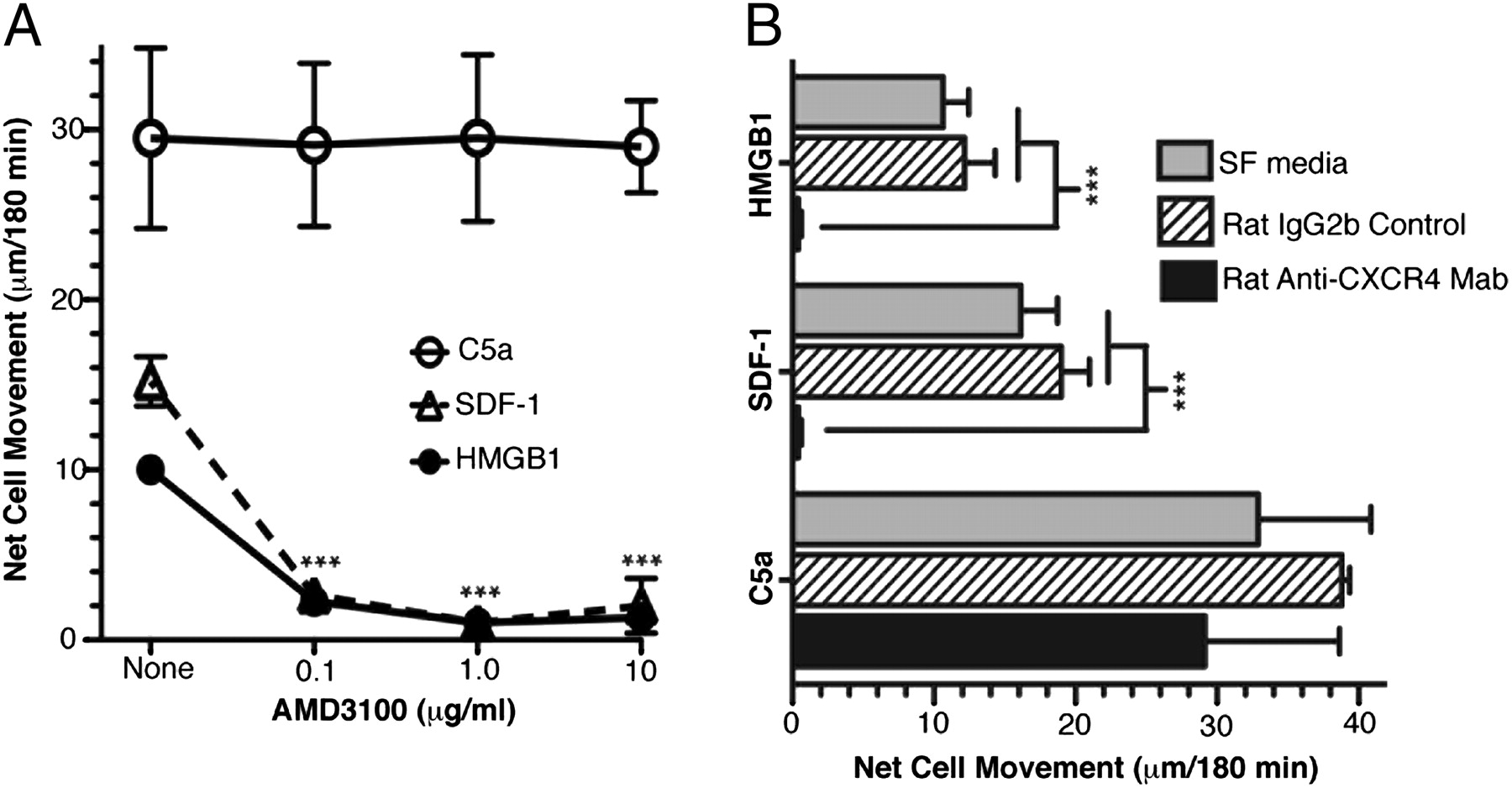 The IKKα-Dependent NF-κB p52/RelB Noncanonical Pathway Is ... on