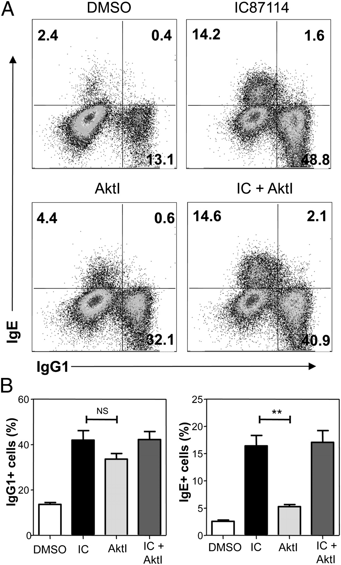 P110 Phosphoinositide 3 Kinase Represses Ige Switch By Potentiating Rc Allen Instrument Wiring Diagrams Download Figure