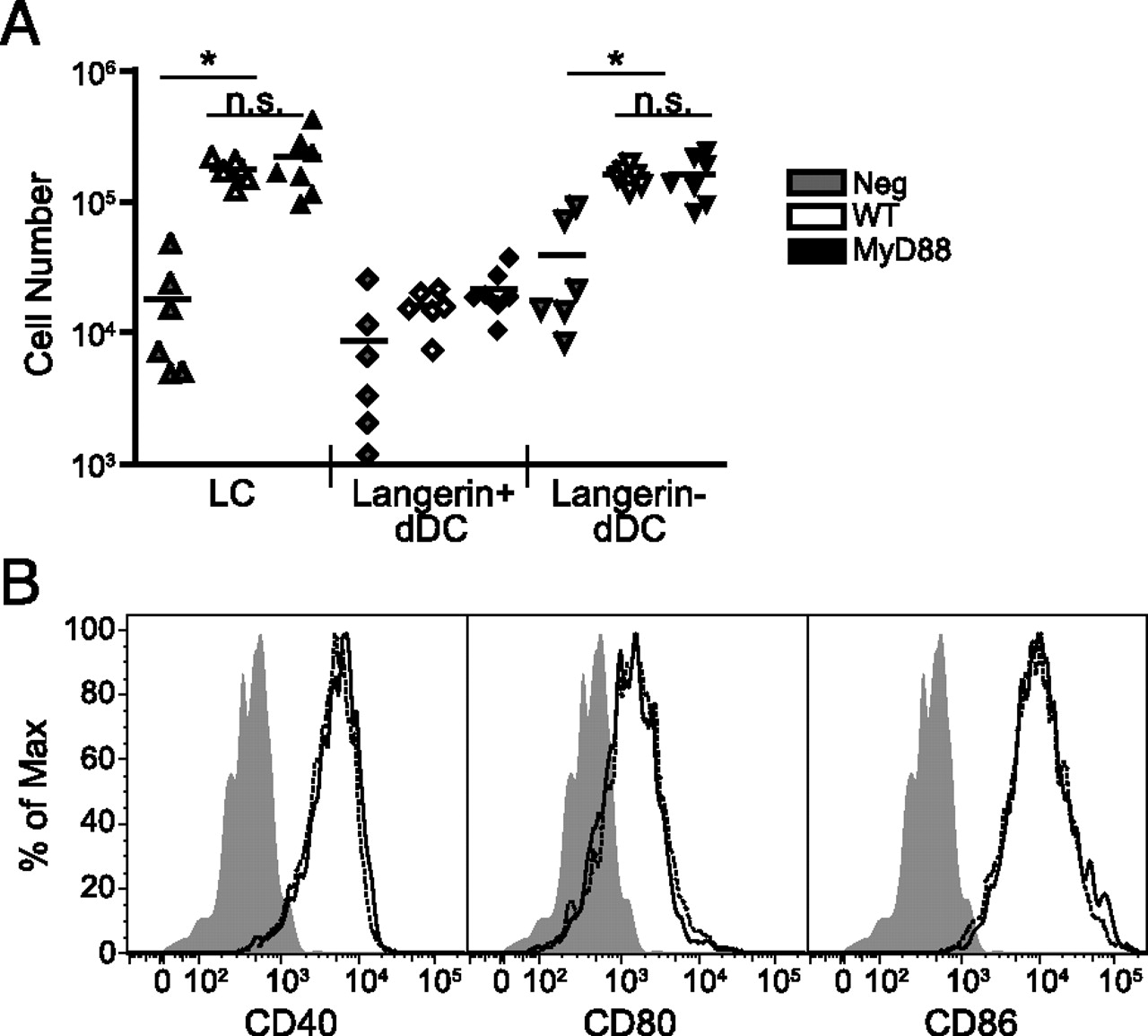 Langerhans cells require myd88 dependent signals for candida download figure biocorpaavc Choice Image