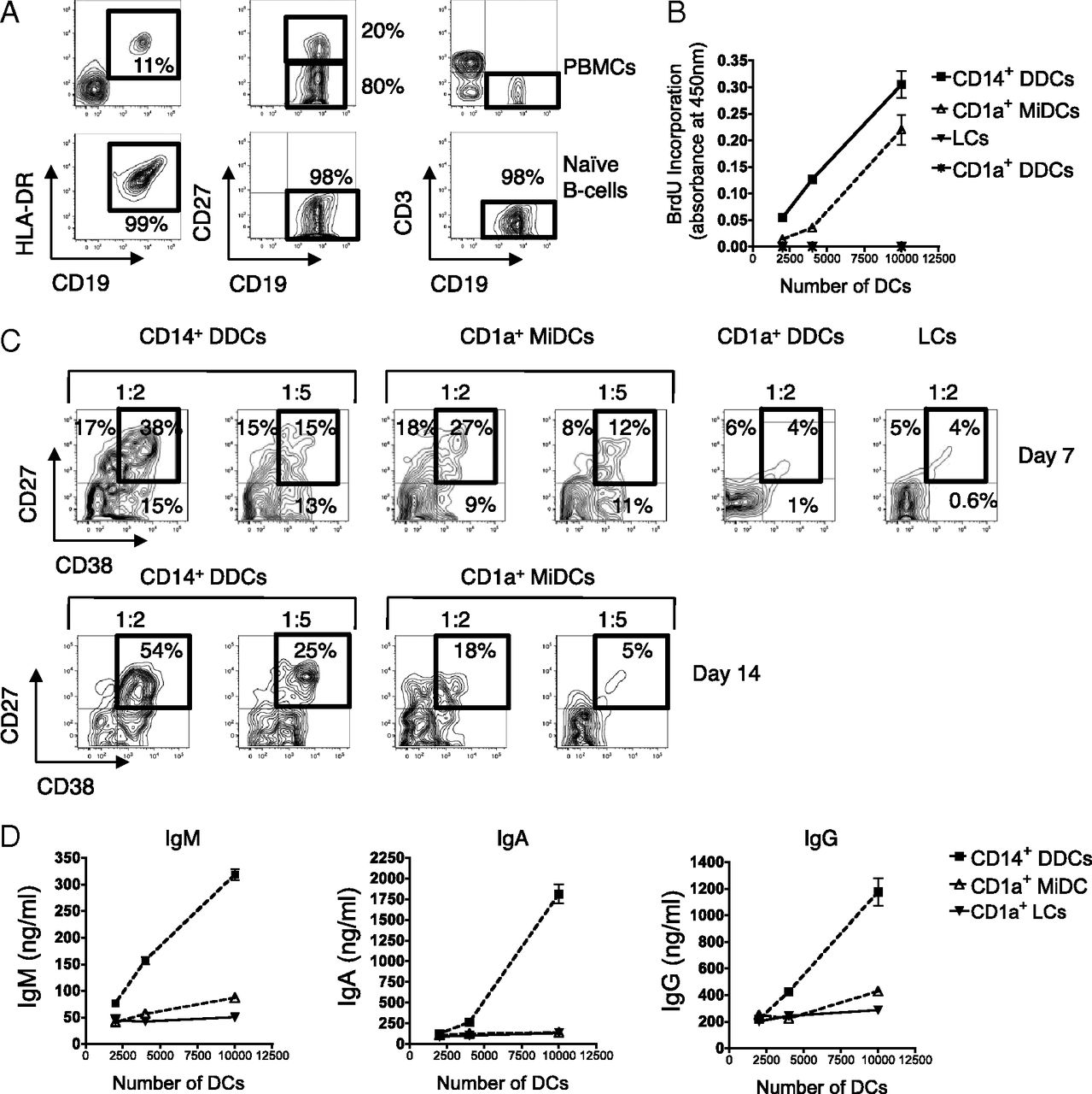Potent Induction Of Antibody Secreting B Cells By Human Dermal Download Free Dc Circuit Series 10 Figure Open In New Tab Powerpoint