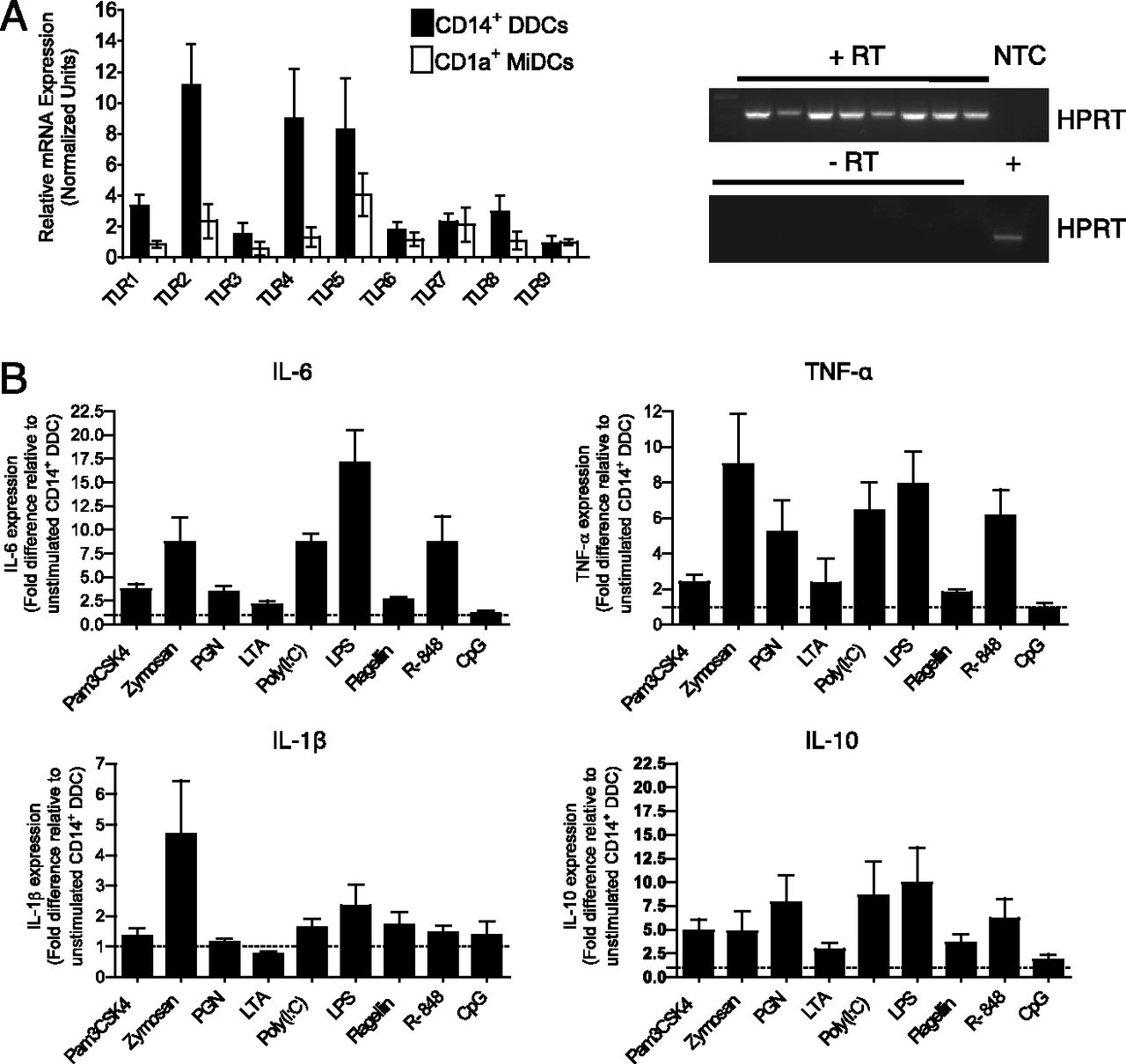 Potent Induction Of Antibody Secreting B Cells By Human Dermal Figure 4 The Circuit Fig 3 But With R1 Replaced A Short Download
